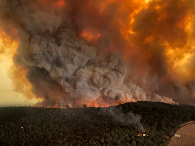 Large areas of Australia have been devastated by fire