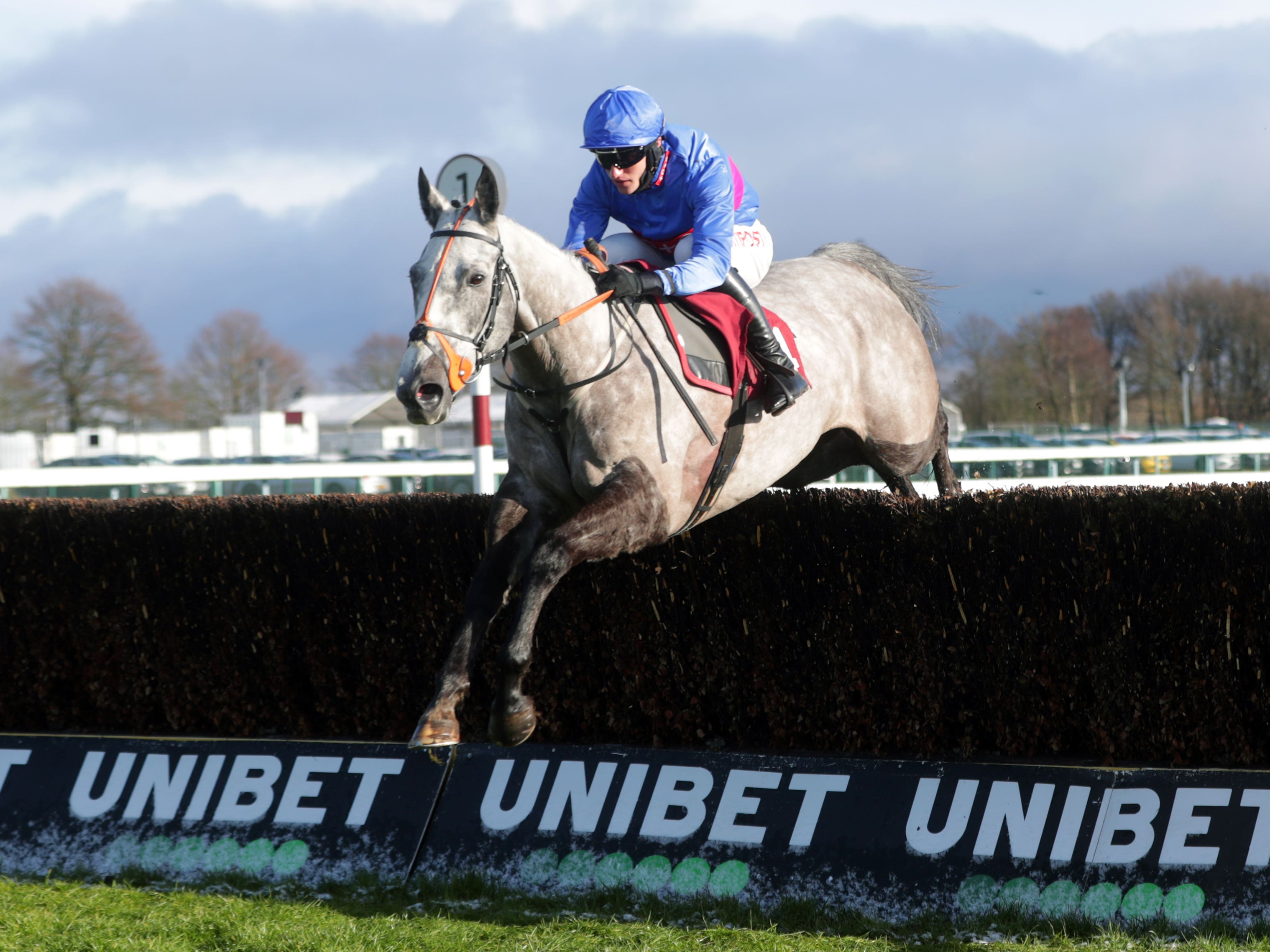 Silver Hallmark and Adam Wedge were decisive winners of the Read Nicky Henderson's Unibet Blog Novices' Chase at Haydock (David Davies/PA)