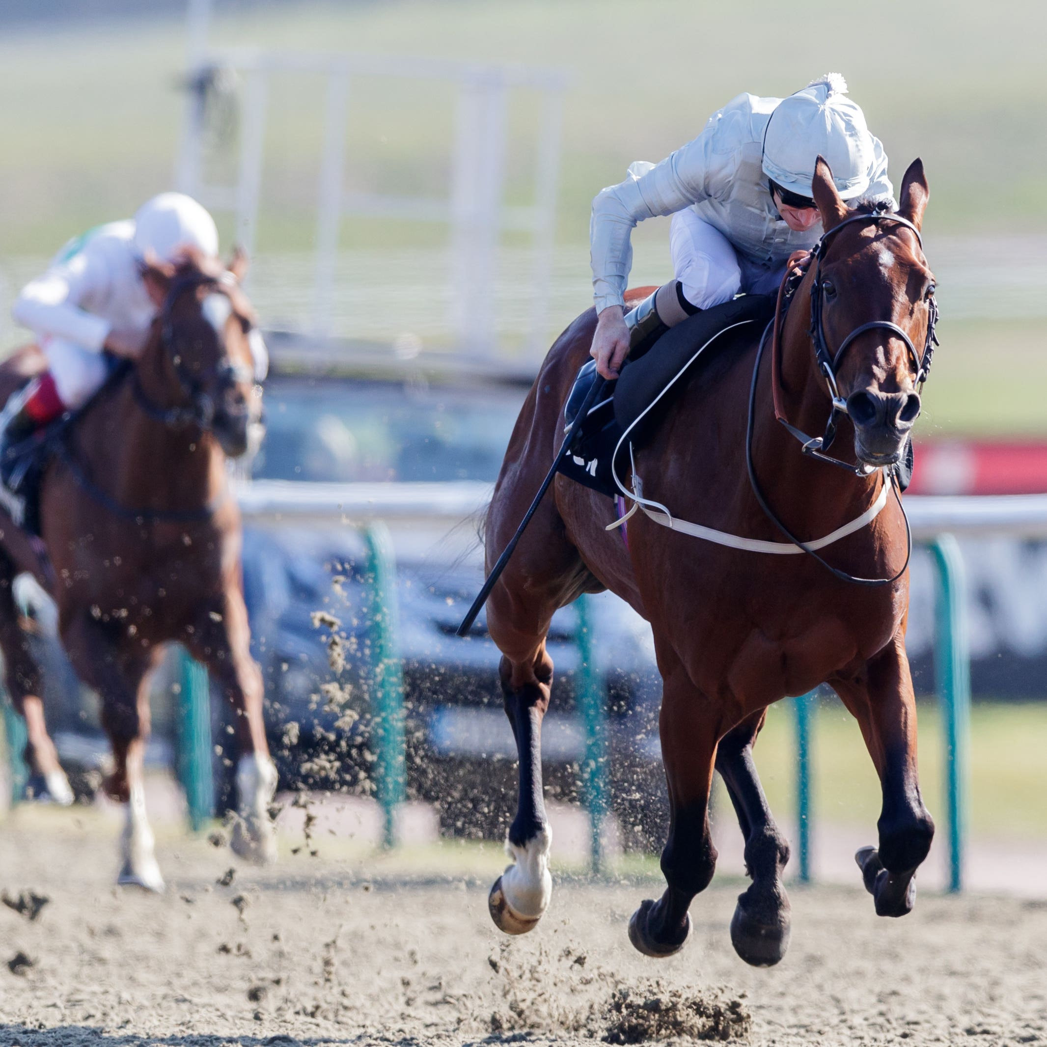 Matterhorn seals an impressive victory in the Betway Easter Classic at Lingfield