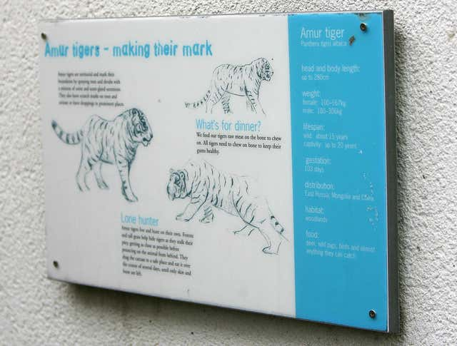 A sign outside the Amur Siberian tigers enclosure at Dublin Zoo