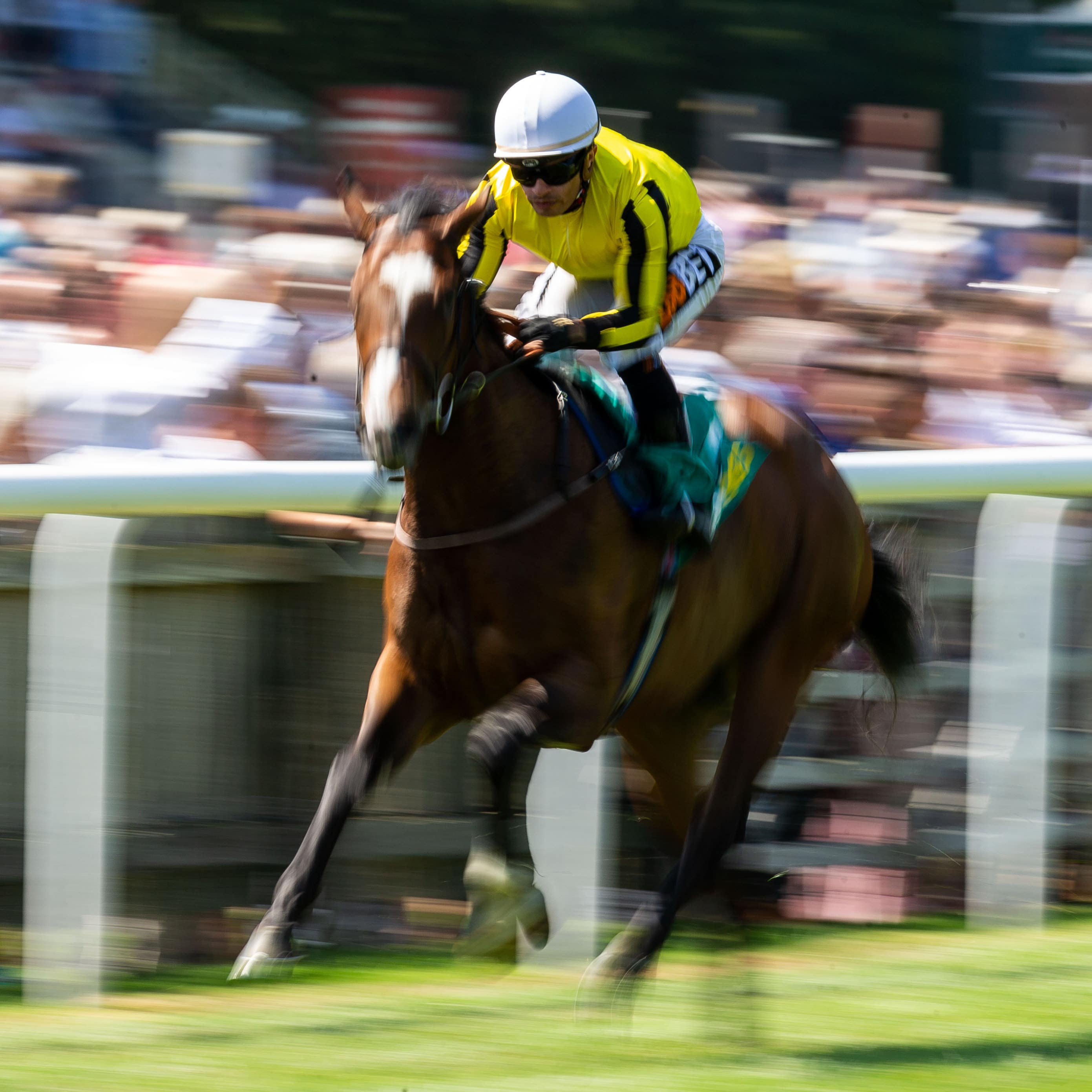 Pretty Pollyanna on her way to winning the Duchess of Cambridge Stakes