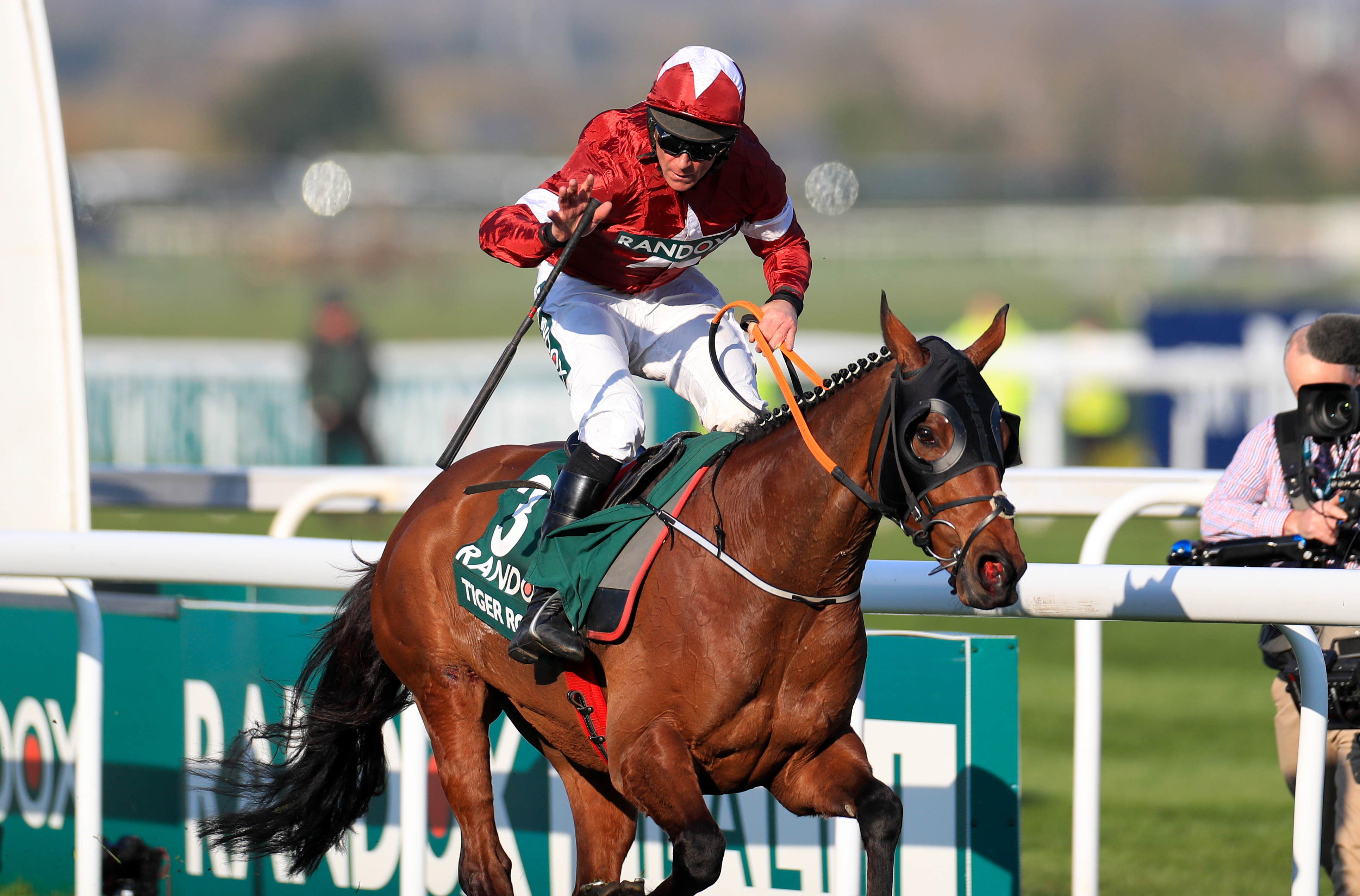 Tiger Roll has been an astonishing servant to Michael O'Leary
