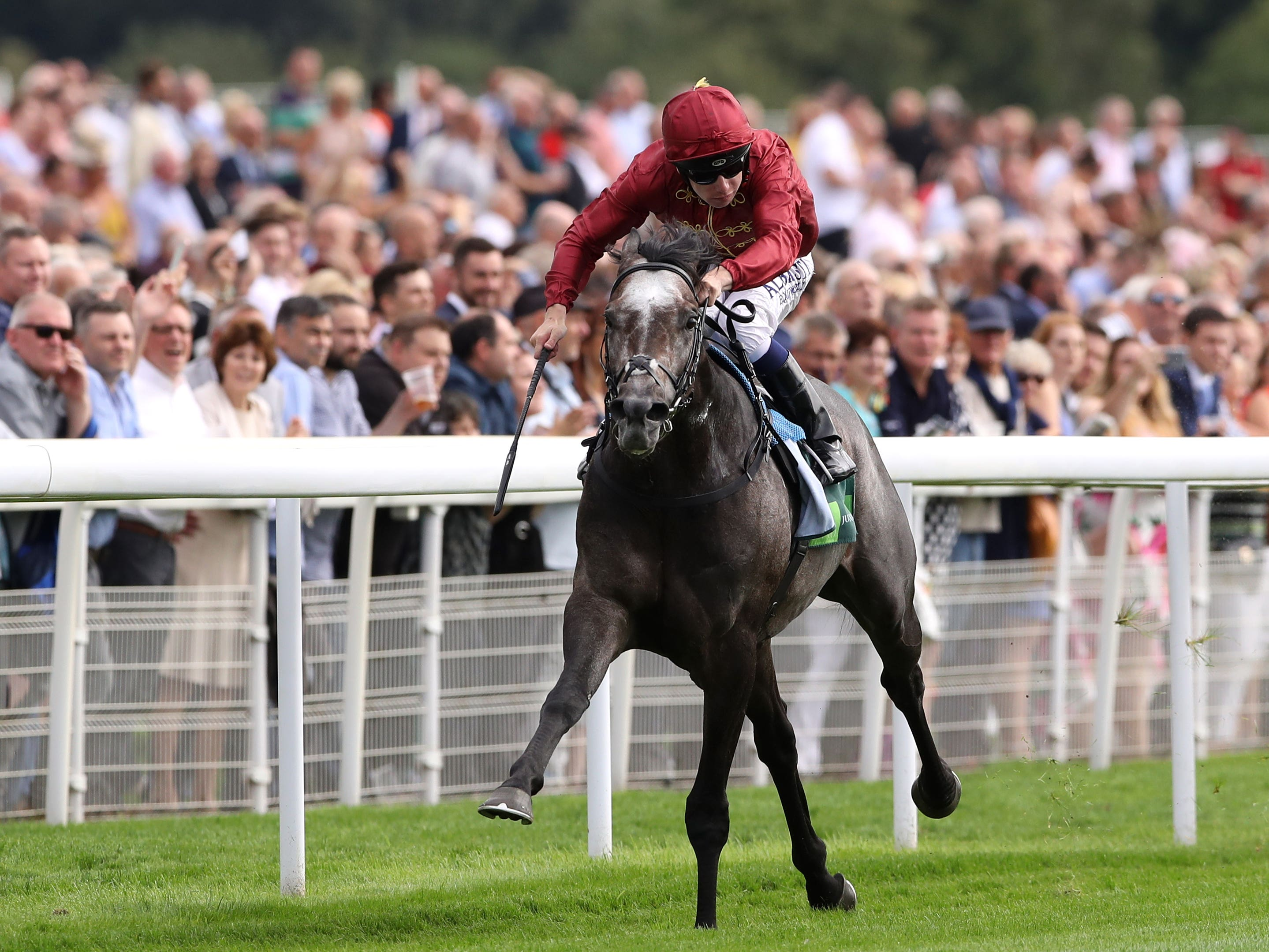 Roaring Lion will revert back to a mile on Saturday (Tim Goode/PA)