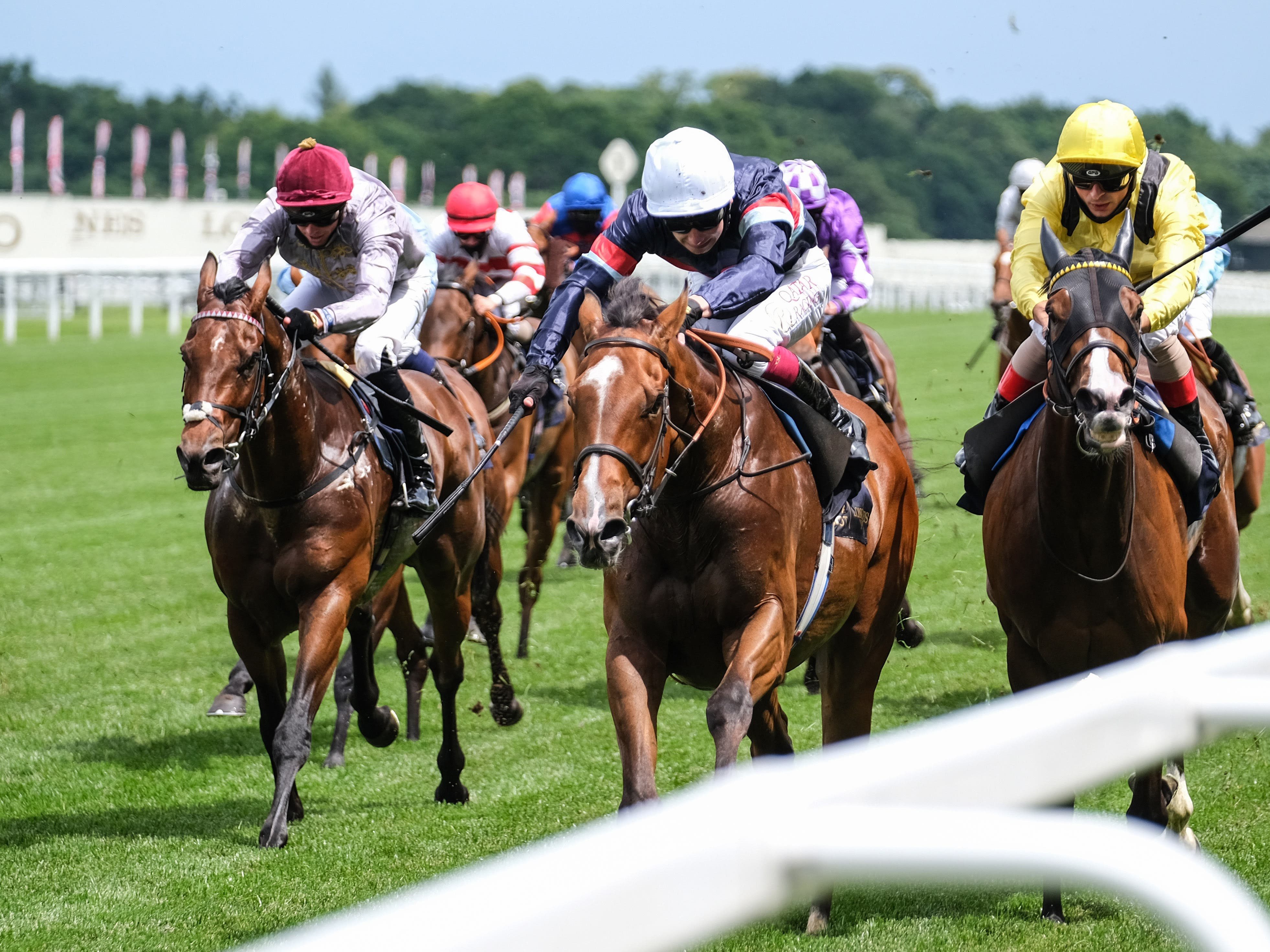 Sir Busker (white cap) has the Queen Anne Stakes at Royal Ascot as a big target (Megan Ridgwell/PA)