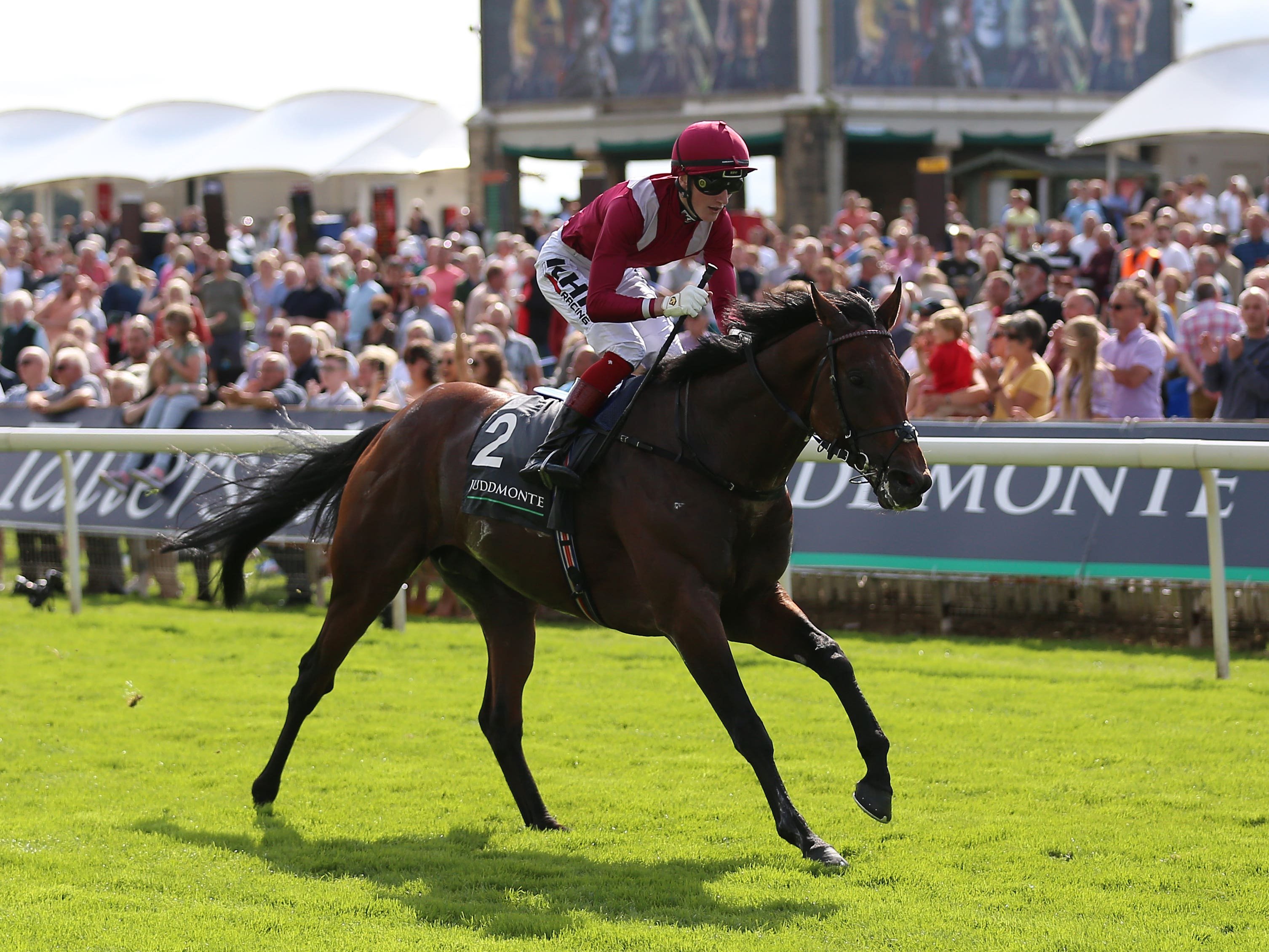 Mishriff is favourite for the Qipco Champion Stakes (Nigel French/PA)