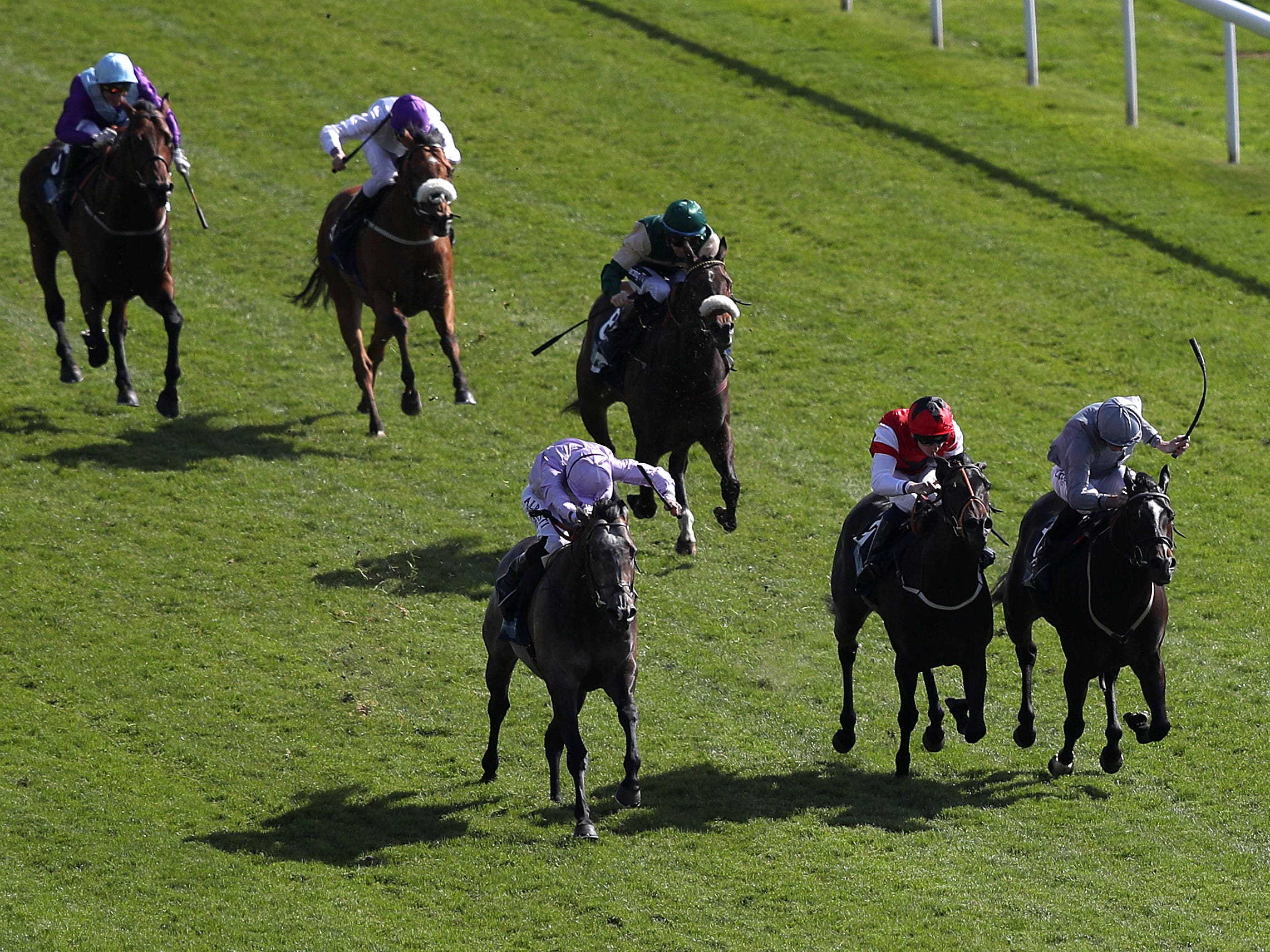 Garrus (front left) wins the British Stallion Studs EBF Westow Stakes at York (Simon Cooper/PA)