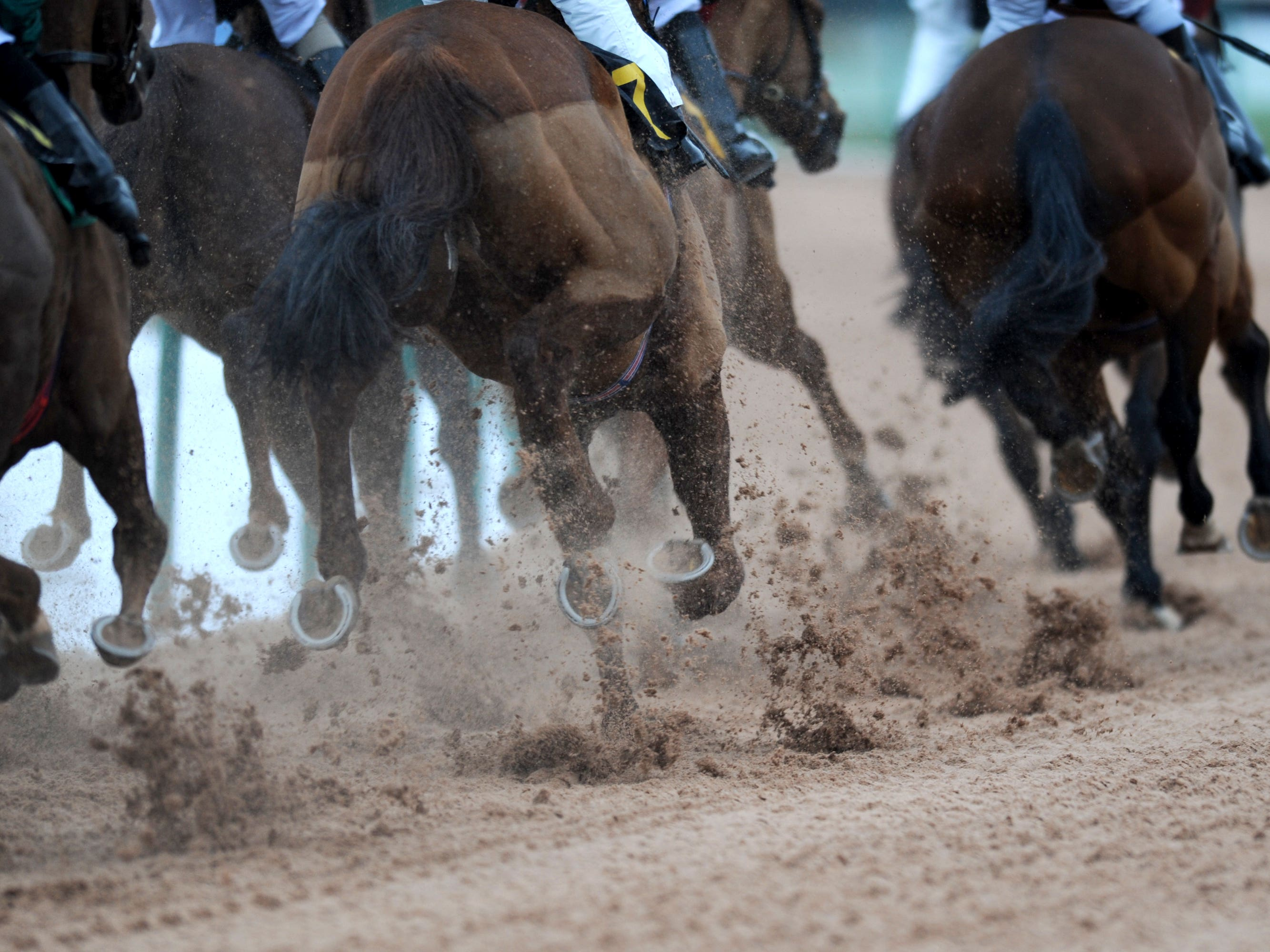 Racing can resume in New York from June 1 (Andrew Matthews/PA)