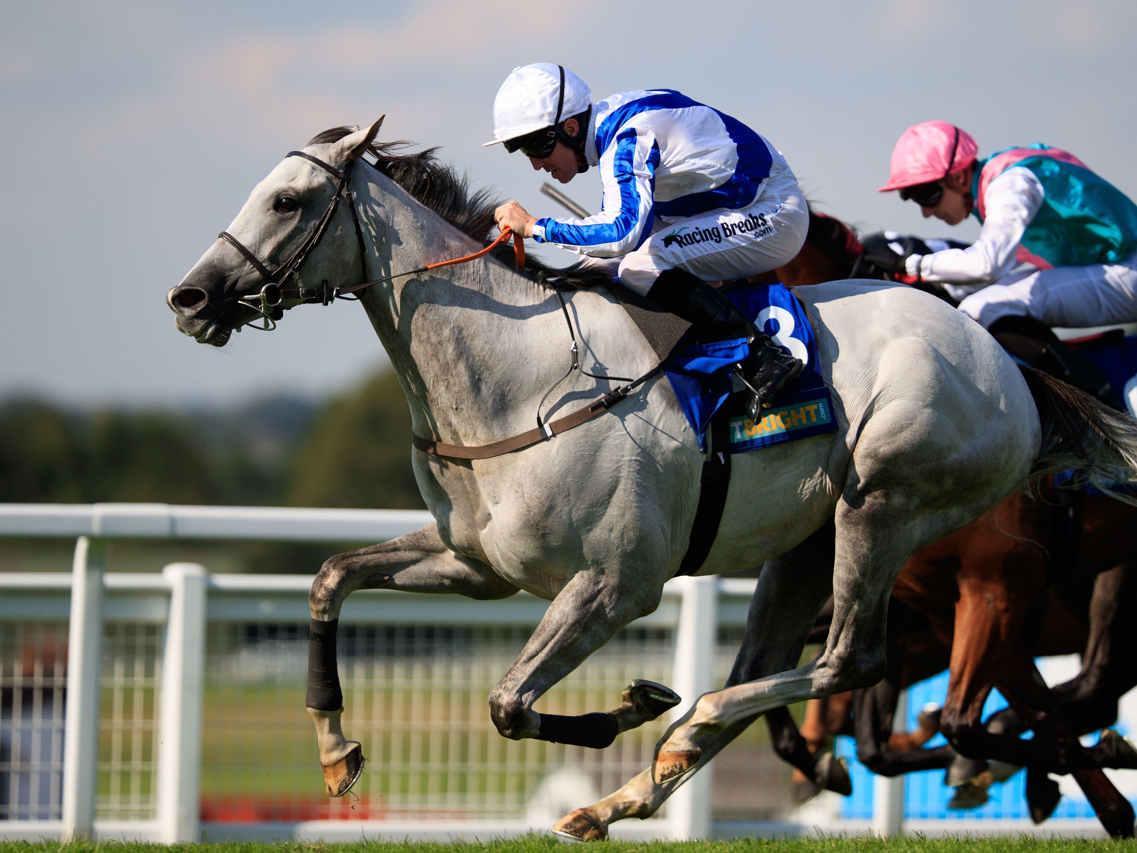 Thundering Blue will bid to repeat his Juddmonte International heroics next week (John Walton/PA)