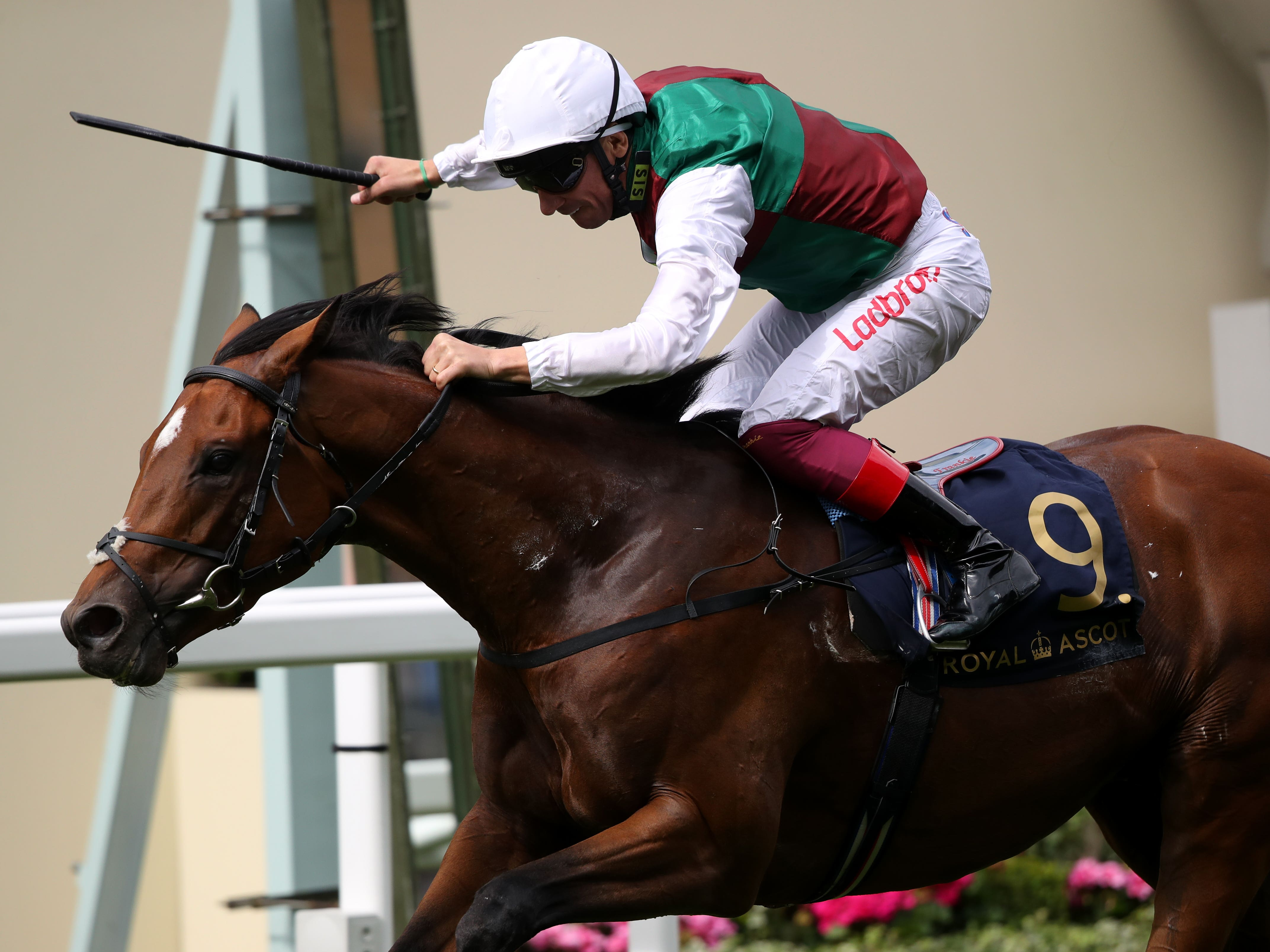 Without Parole starred in the St James's Palace Stakes (John Walton/PA)