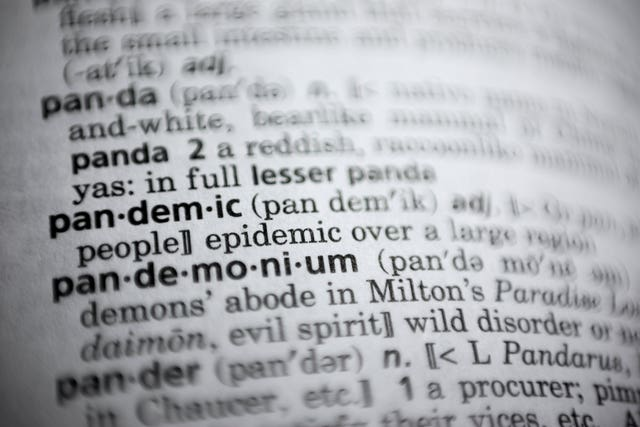 The word pandemic in a dictionary