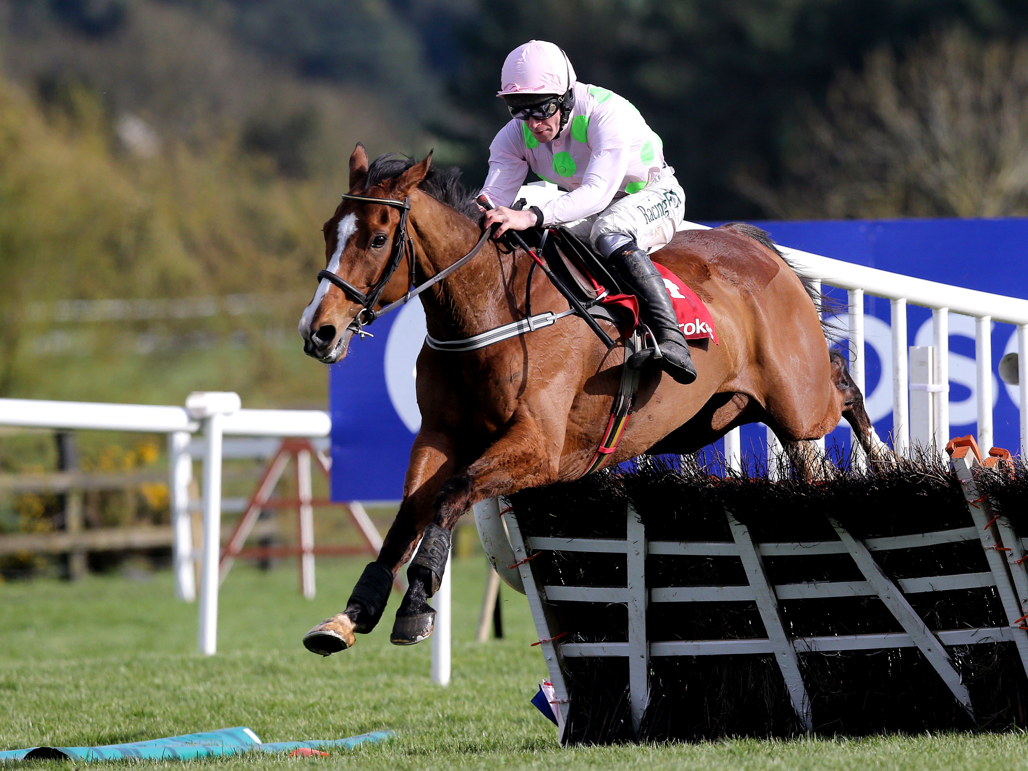 Faugheen has been entered for the JLT Long Walk Hurdle at Ascot (Brian Lawless/PA)