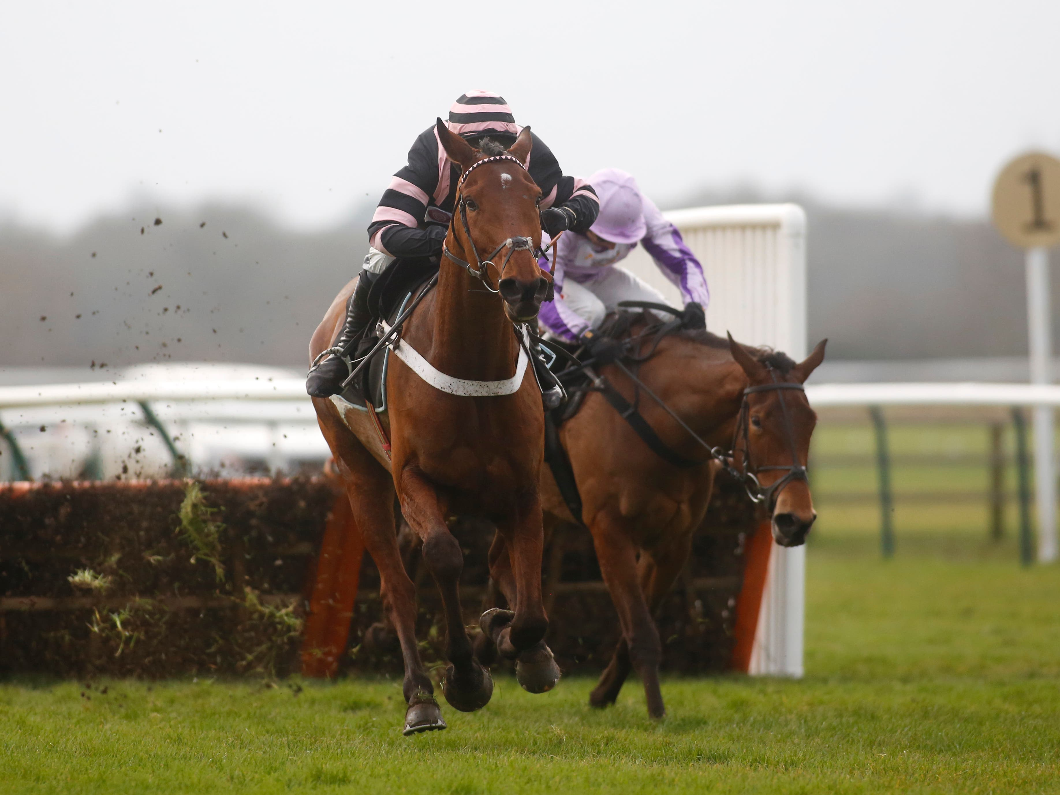 Mr Whipped opened his account over fences at Haydock (Julian Herbert/PA)