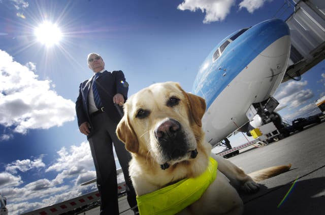 Guide dogs allowed to fly