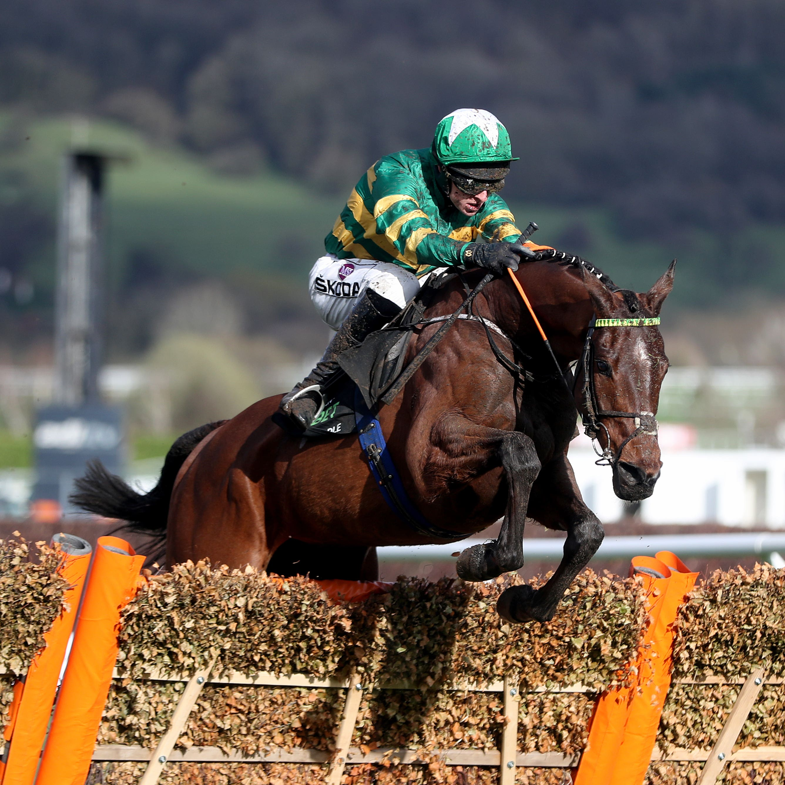 Espoir D'Allen powered to victory in the Champion Hurdle