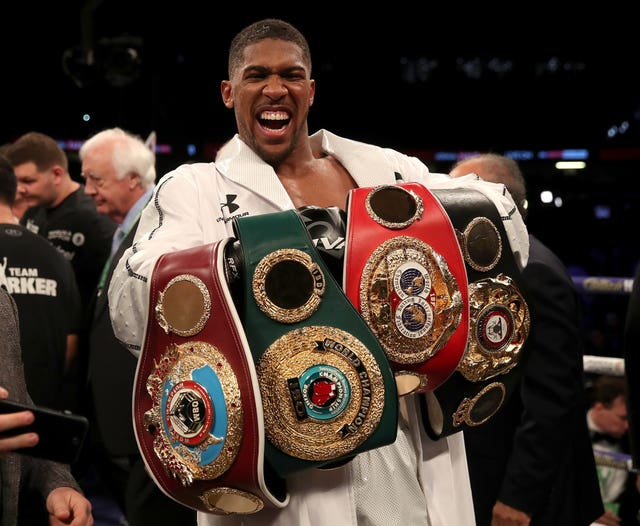 Anthony Joshua, pictured, has risen to prominence in Fury's absence (Nick Potts/PA)