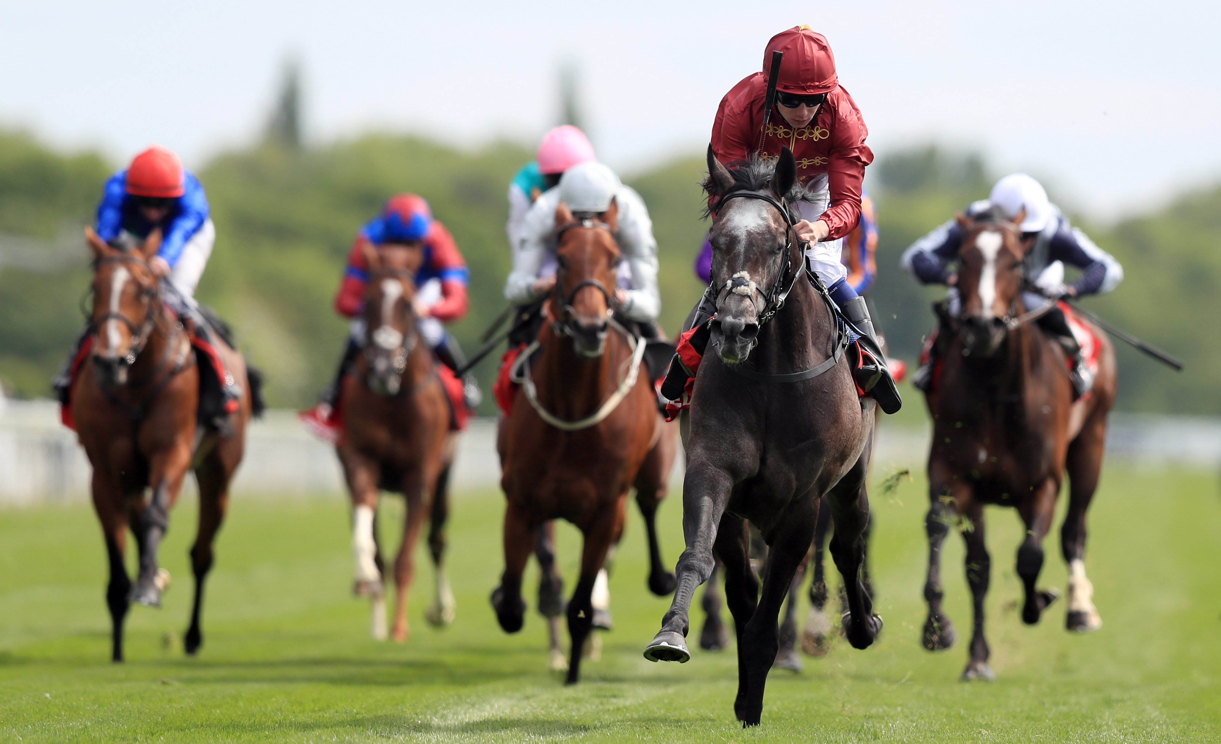 Roaring Lion was an easy winner of the Dante on his last visit to York