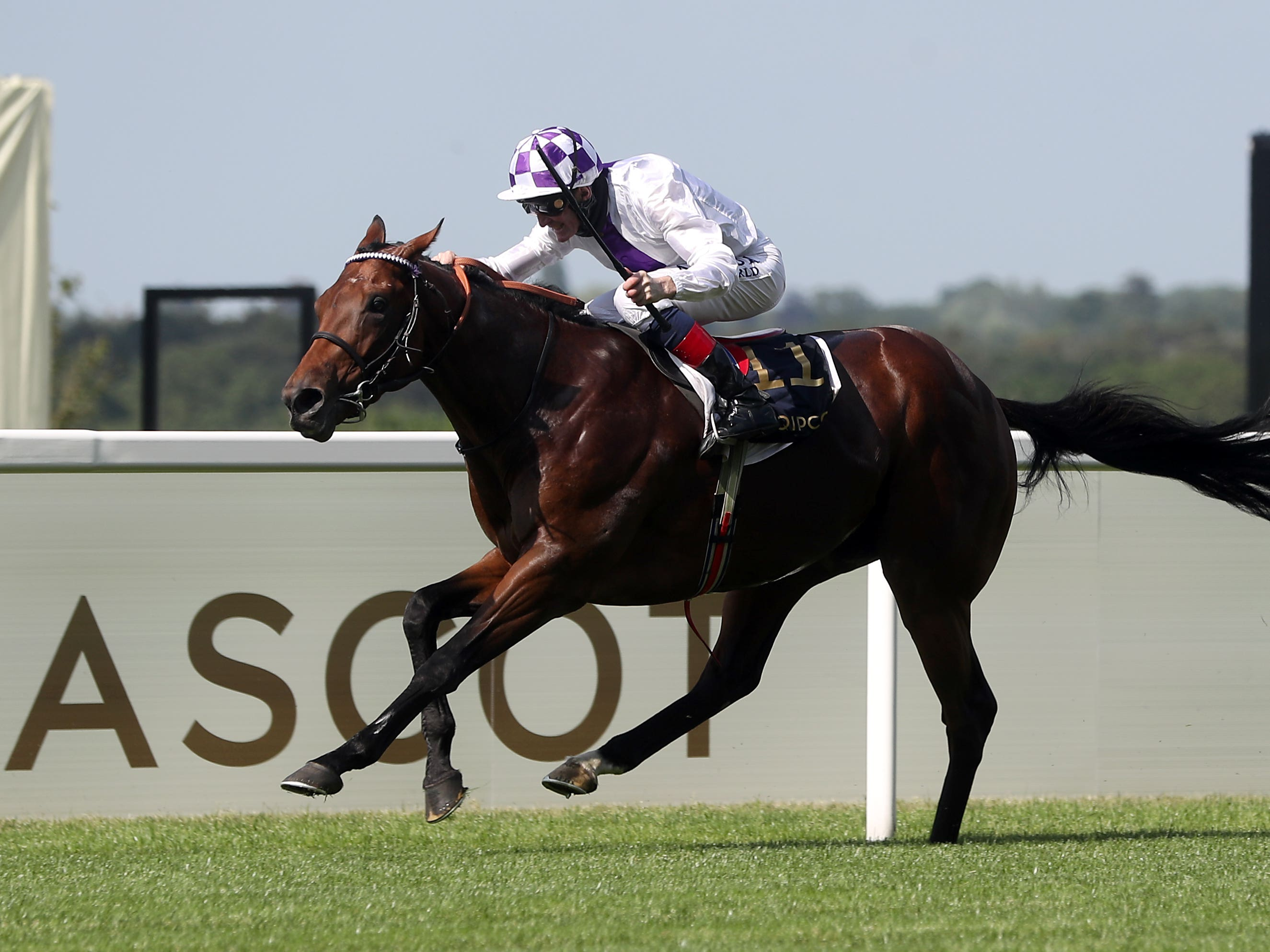 Poetic Flare is bidding for more Group One glory (David Davies/PA)