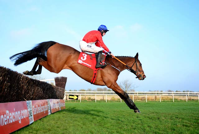 Envoi Allen's jumping has been foot perfect to date