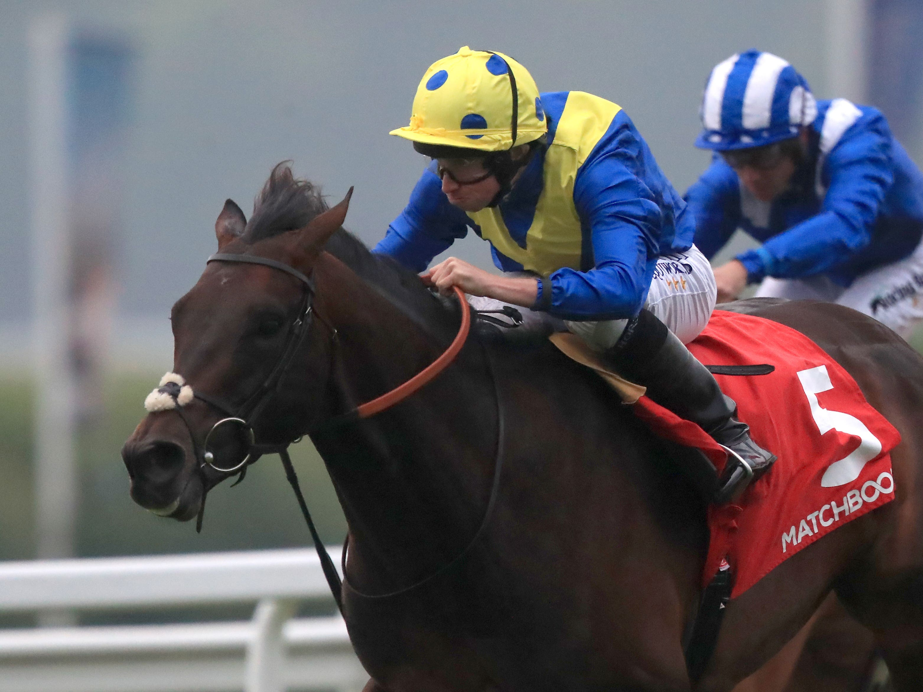 Poet's Word was too good for his rivals at Sandown