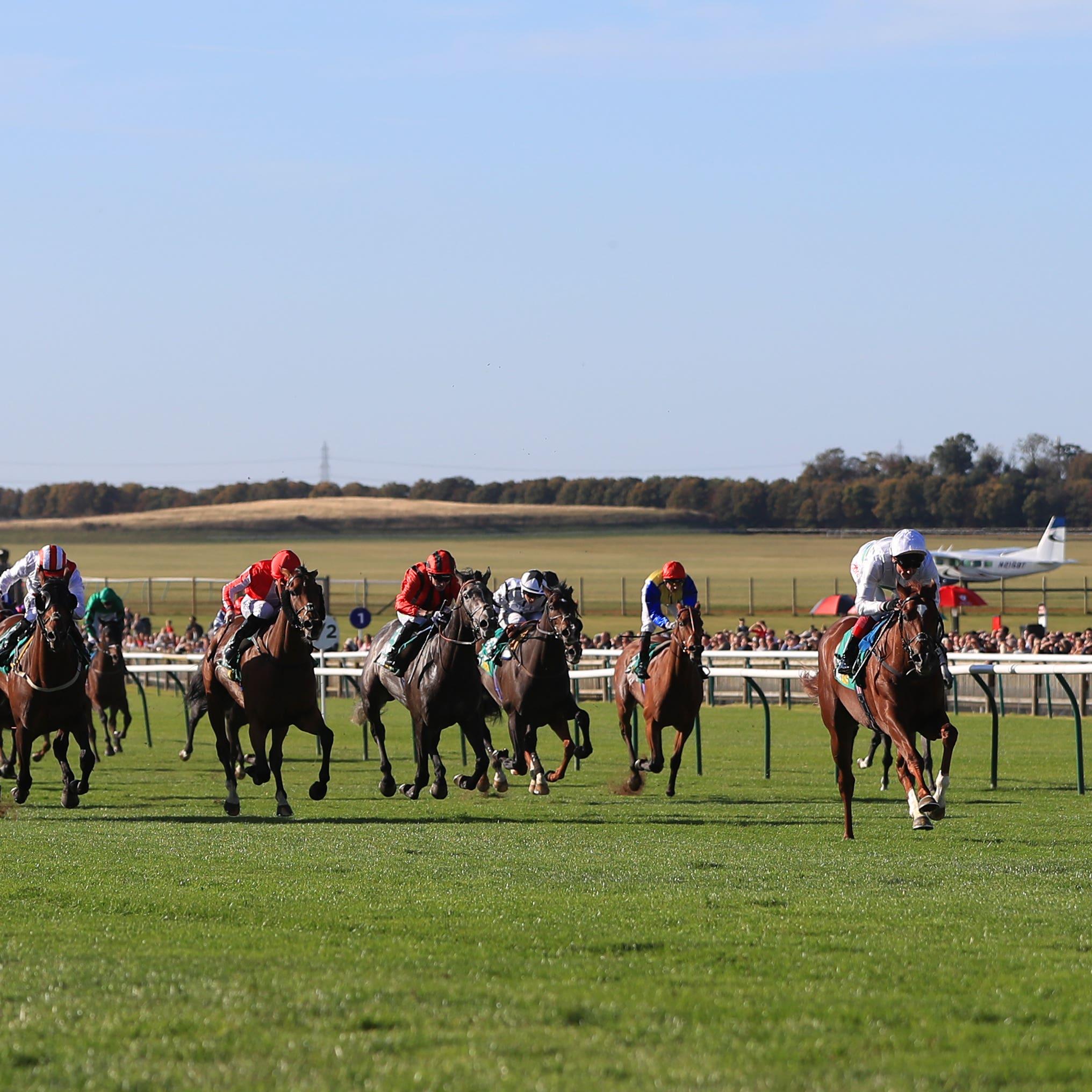 Wissahickon (right) spreadeagles a big field to win the Cambridgeshire