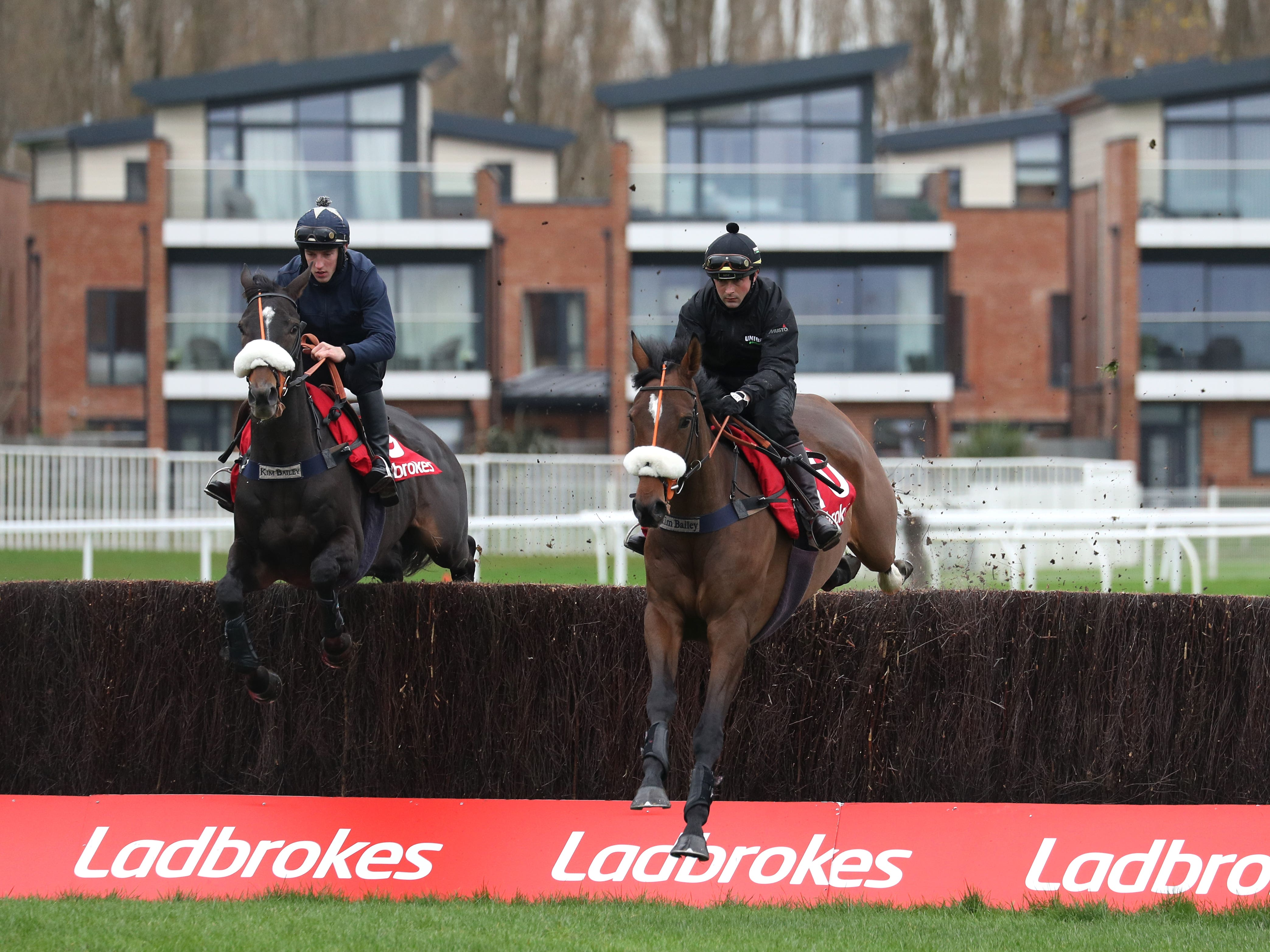 Vinndication (left) did not please everyone with his schooling at Newbury, but trainer is unperturbed about his Ladbrokes Trophy chances (Andrew Matthews/PA)