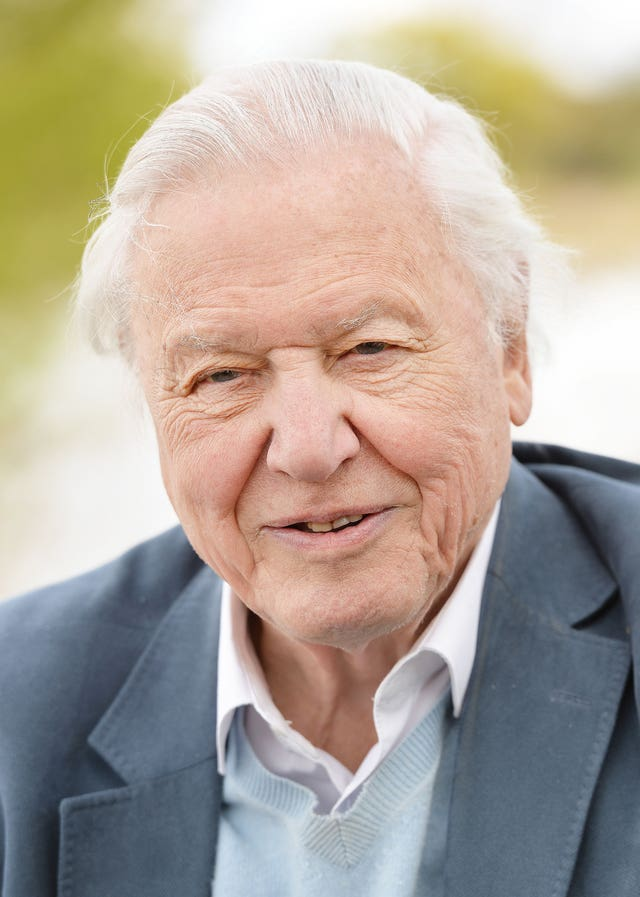 David Attenborough joins Instagram