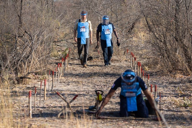 Harry saw the work of the Halo Trust for himself when last year he met staff clearing a minefield in Dirico, Angola. Dominic Lipinski/PA Wire