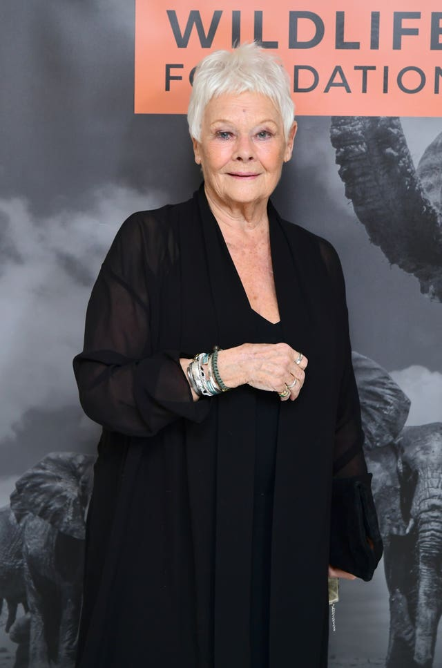Dame Judi Dench comments