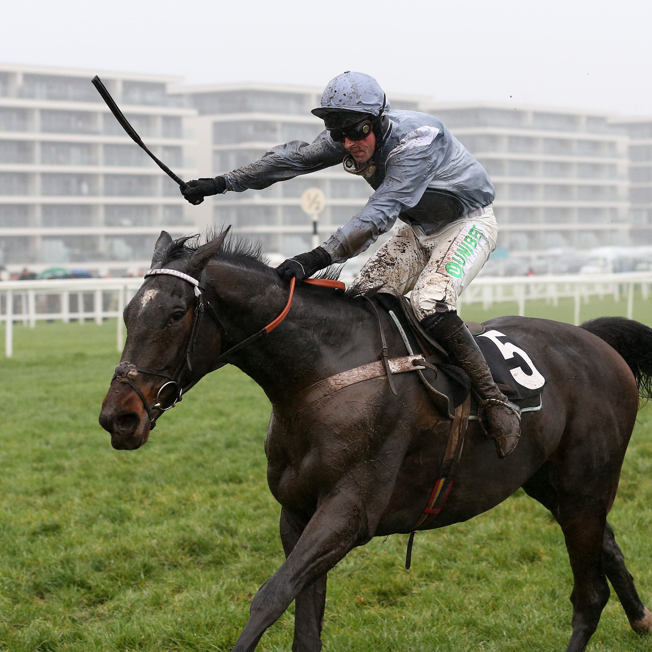 Santini and Nico de Boinville win the Ladbrokes John Francombe Novices' Chase at Newbury
