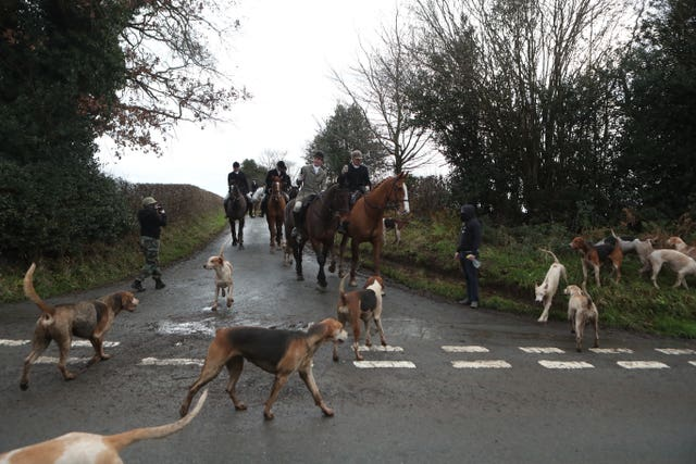 Hunt saboteurs photograph a Boxing Day Hunt near Husthwaite, North Yorkshire