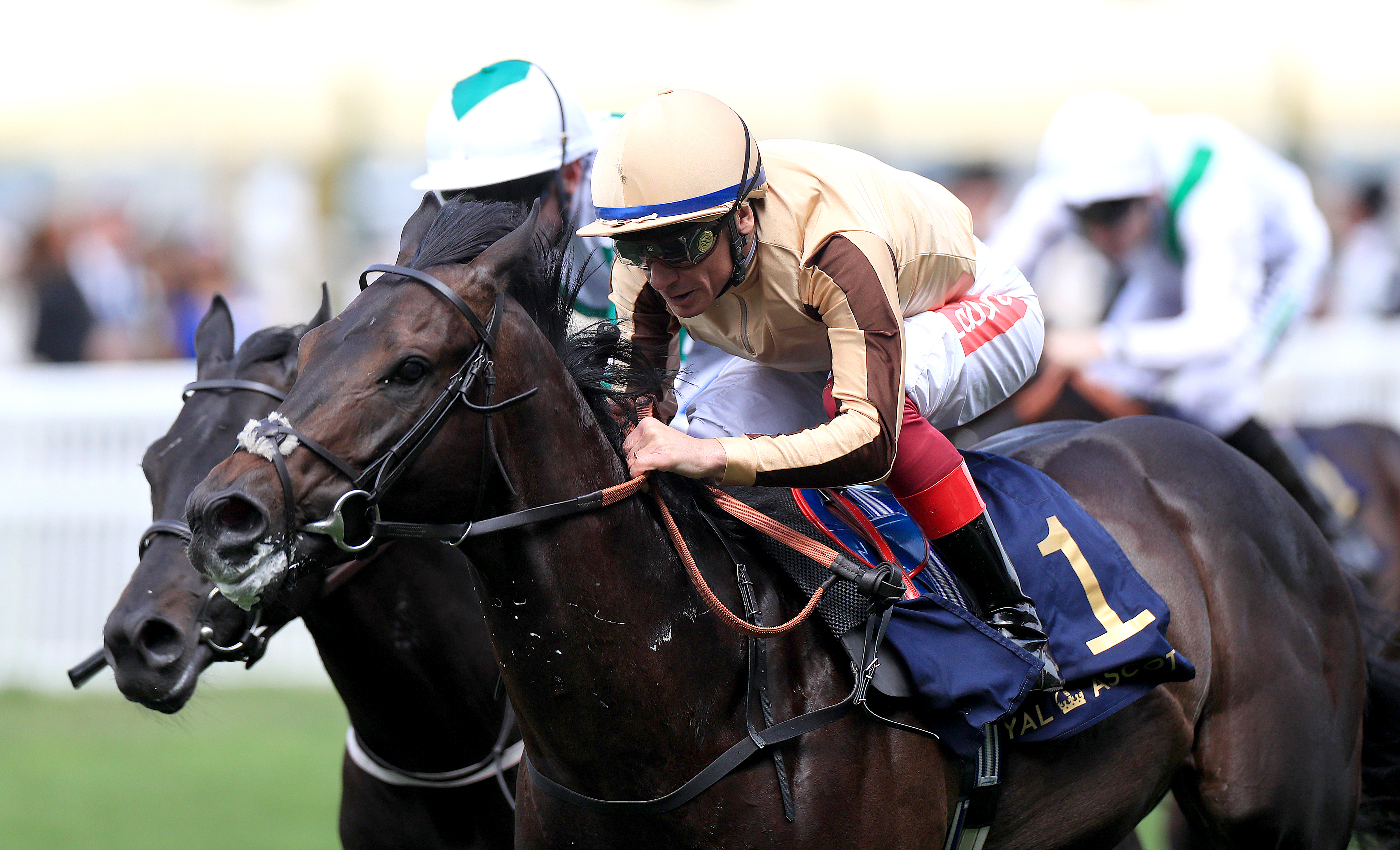'Ali will be Frankie Dettori's first trip in the Breeders Cup this year