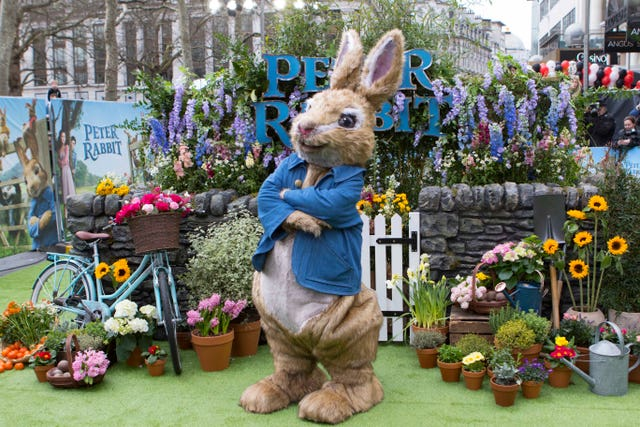The real star of Beatrix Potter's Peter Rabbit (Rick Findler/PA)