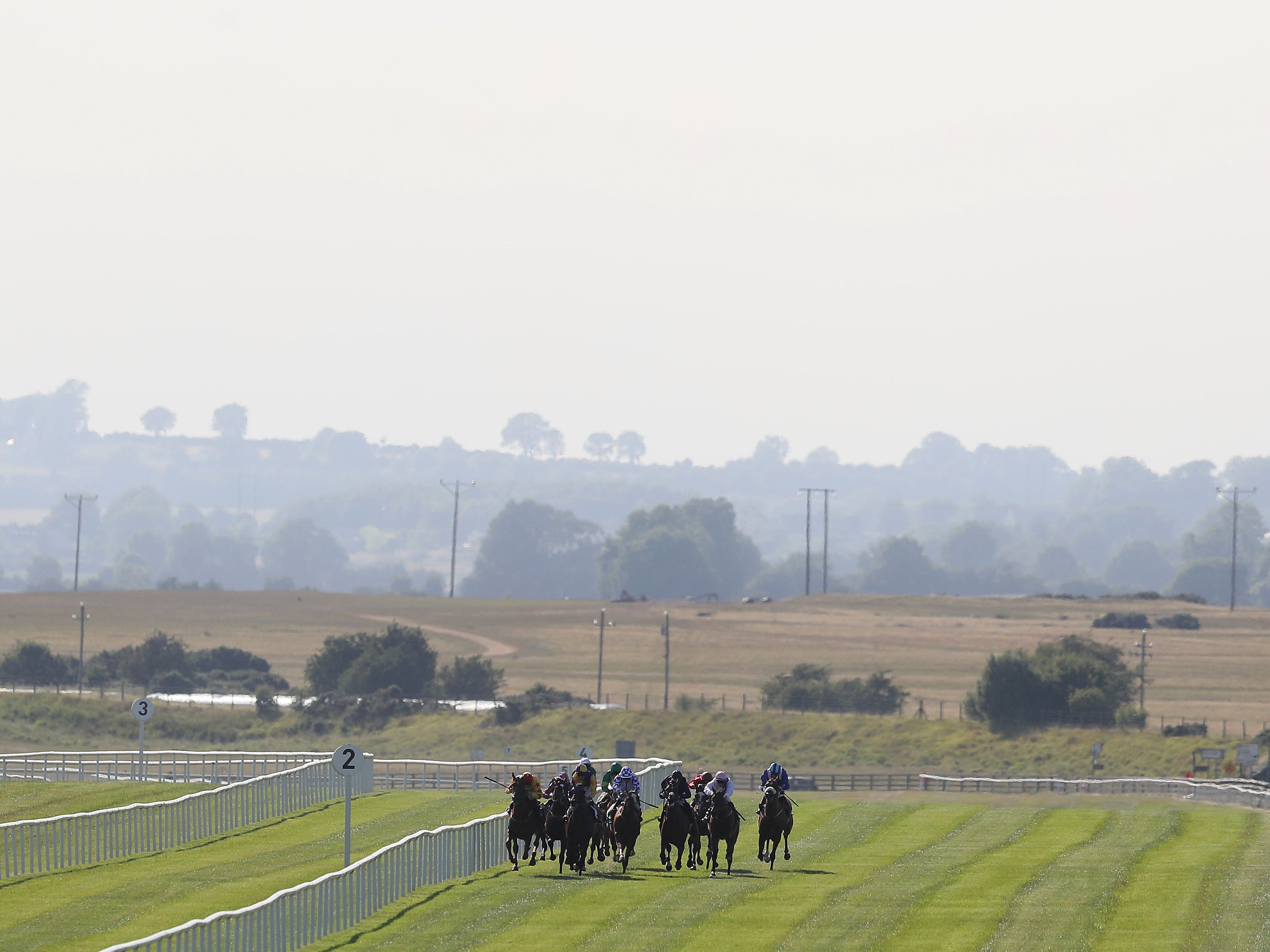 Decrypt is set to run in the Irish 2,000 Guineas at the Curragh