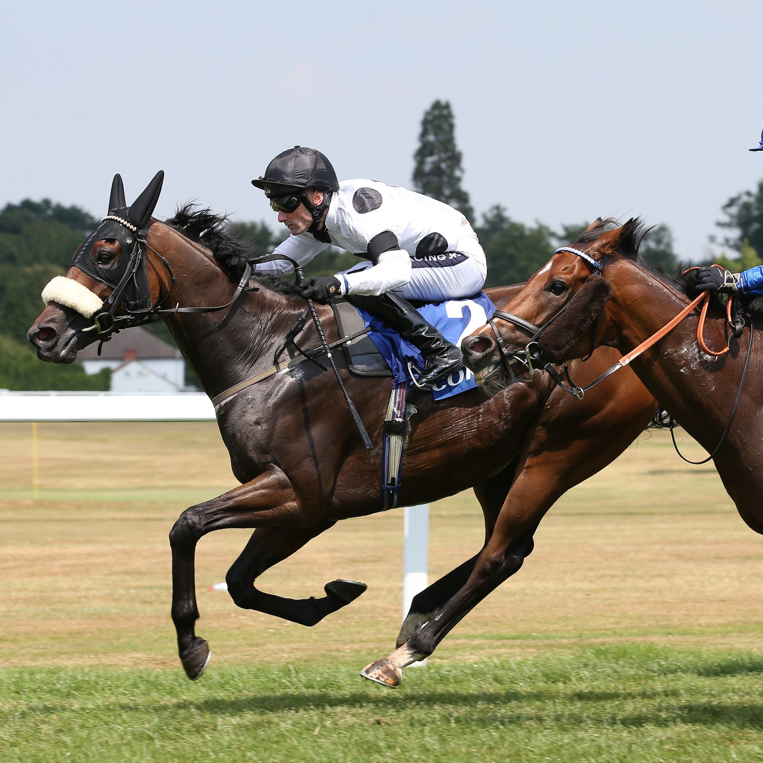 Judicial (left) winning the Coral Charge at Sandown