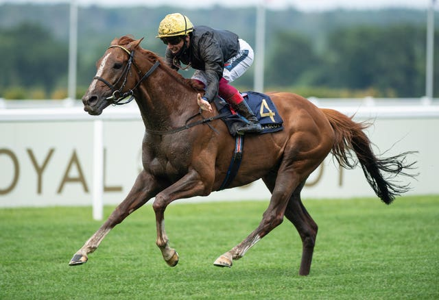 Stradivarius will be aiming to spoil the party for his stablemate