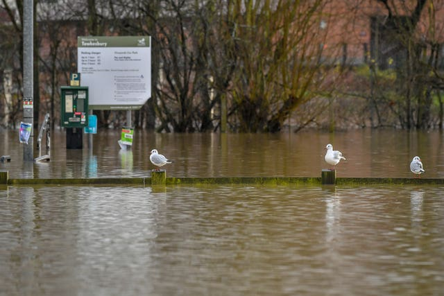 Birds rest on a fence in a flooded car park beside Tewkesbury Abbey (Ben Birchall/PA)