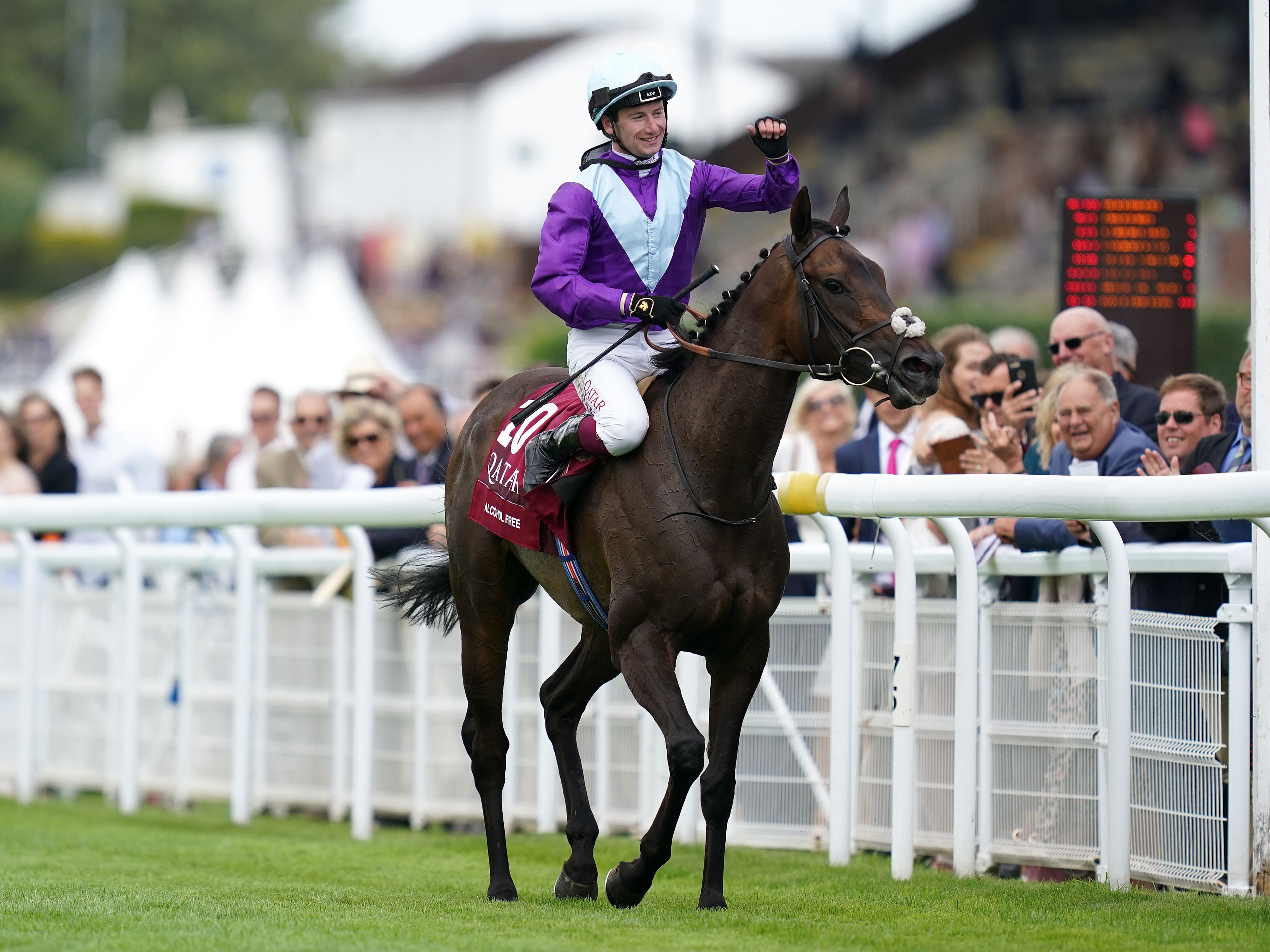 Alcohol Free and Oisin Murphy after winning the Qatar Sussex Stakes (John Walton/PA)