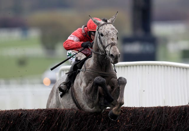 Duc Des Genievres won the Arkle last season