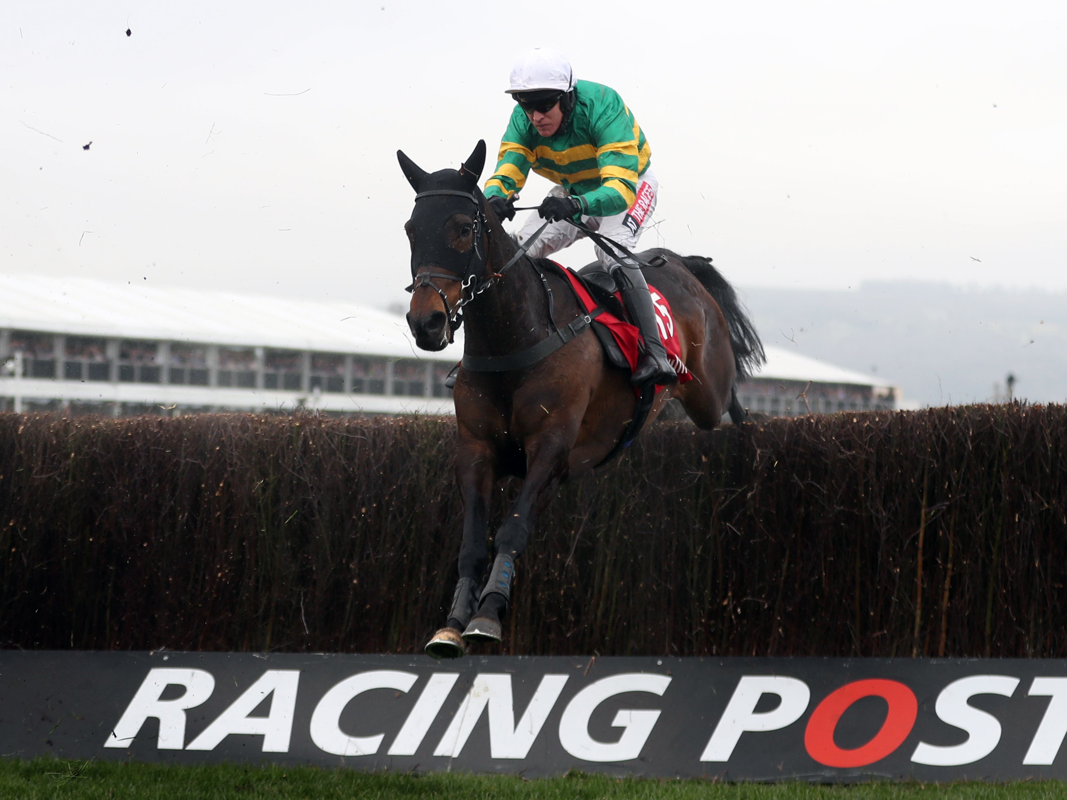 Regal Encore may end up in the Grand National again this season (David Davies/PA)