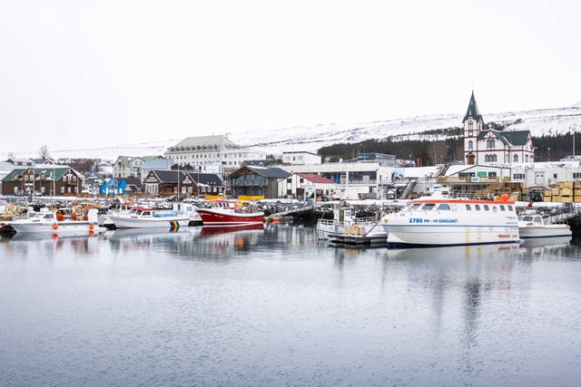 Husavik harbour in Iceland