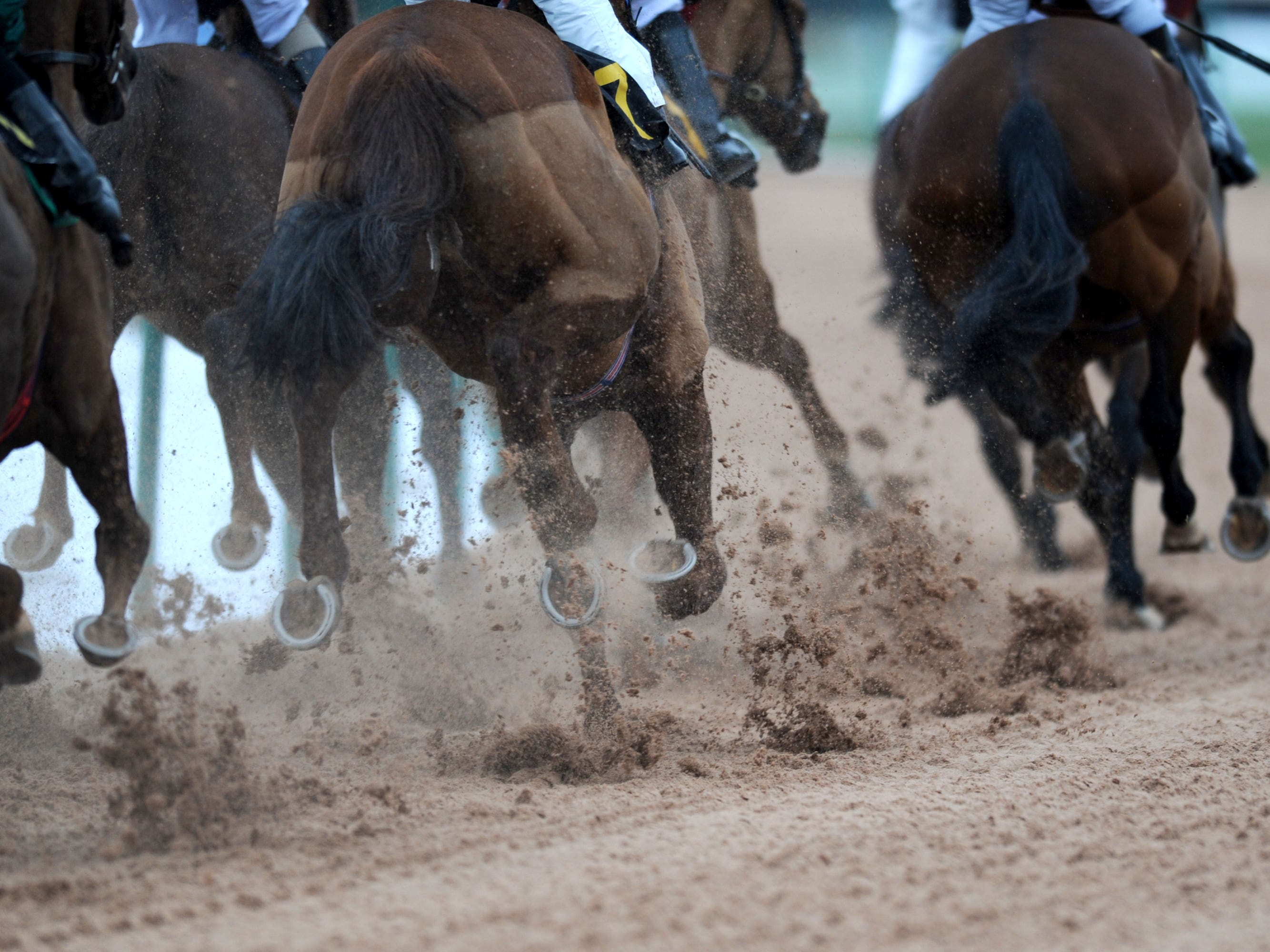 The Belmont Stakes will be run next month (Andrew Matthews/PA)
