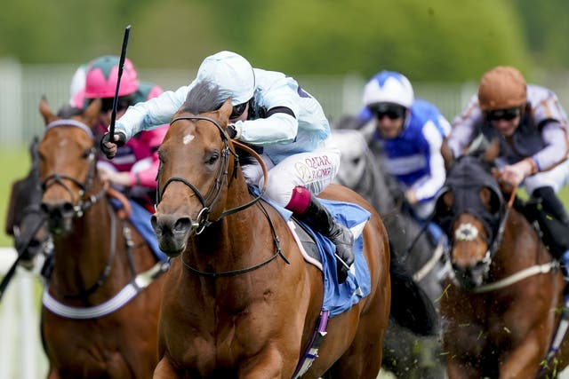 Starman began his season with a win in the Duke of York Stakes