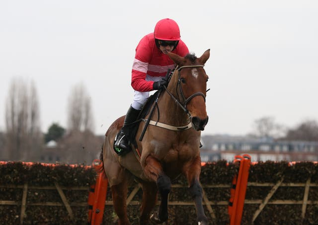 Laurina is one of a number high-class recruits sent to Paul Nicholls by owner Jared Sullivan (Julian Herbert/PA)