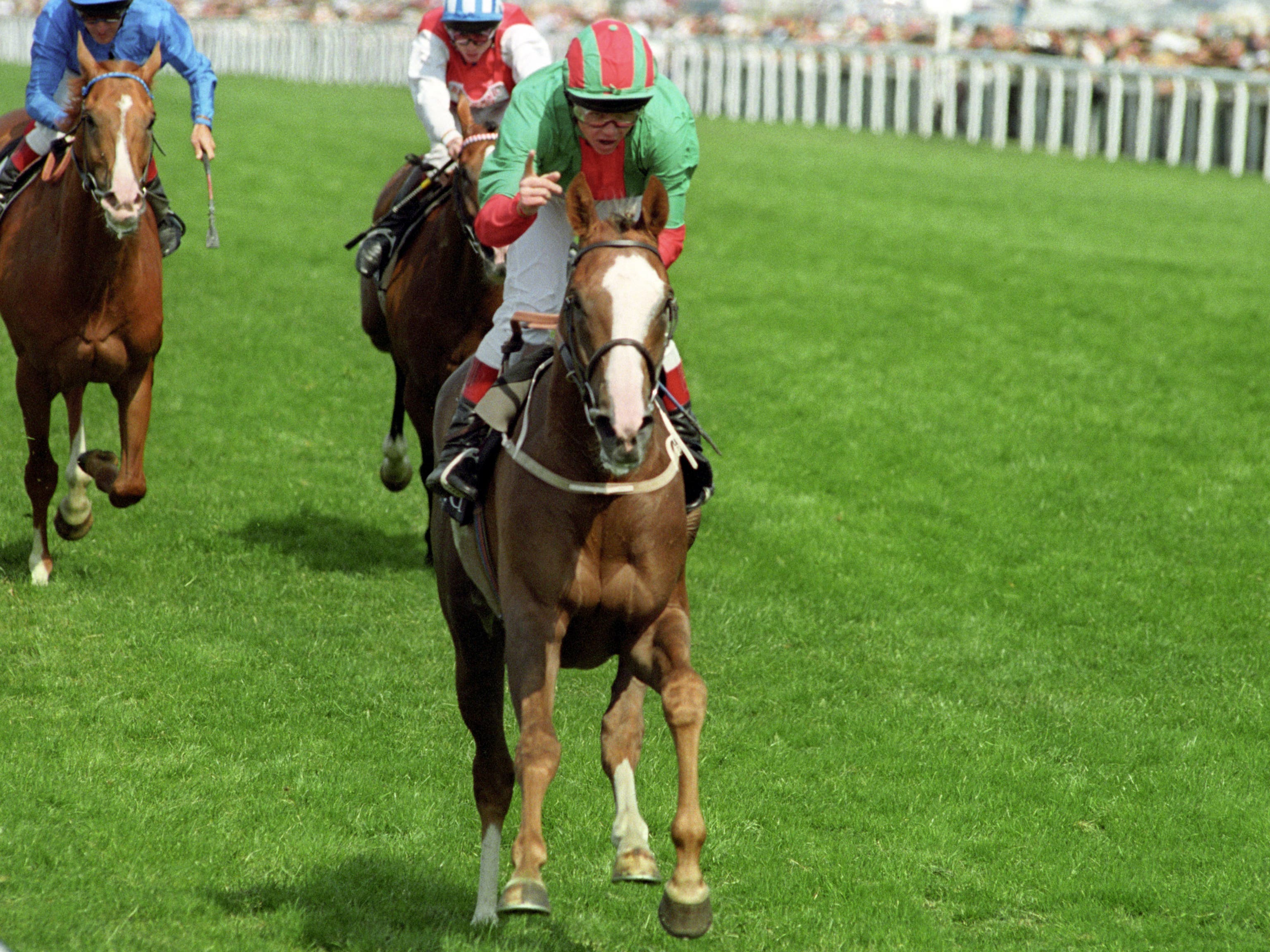 Double Trigger's finest hour, winning the Gold Cup at Ascot in 1995 (Neil Munns/PA)