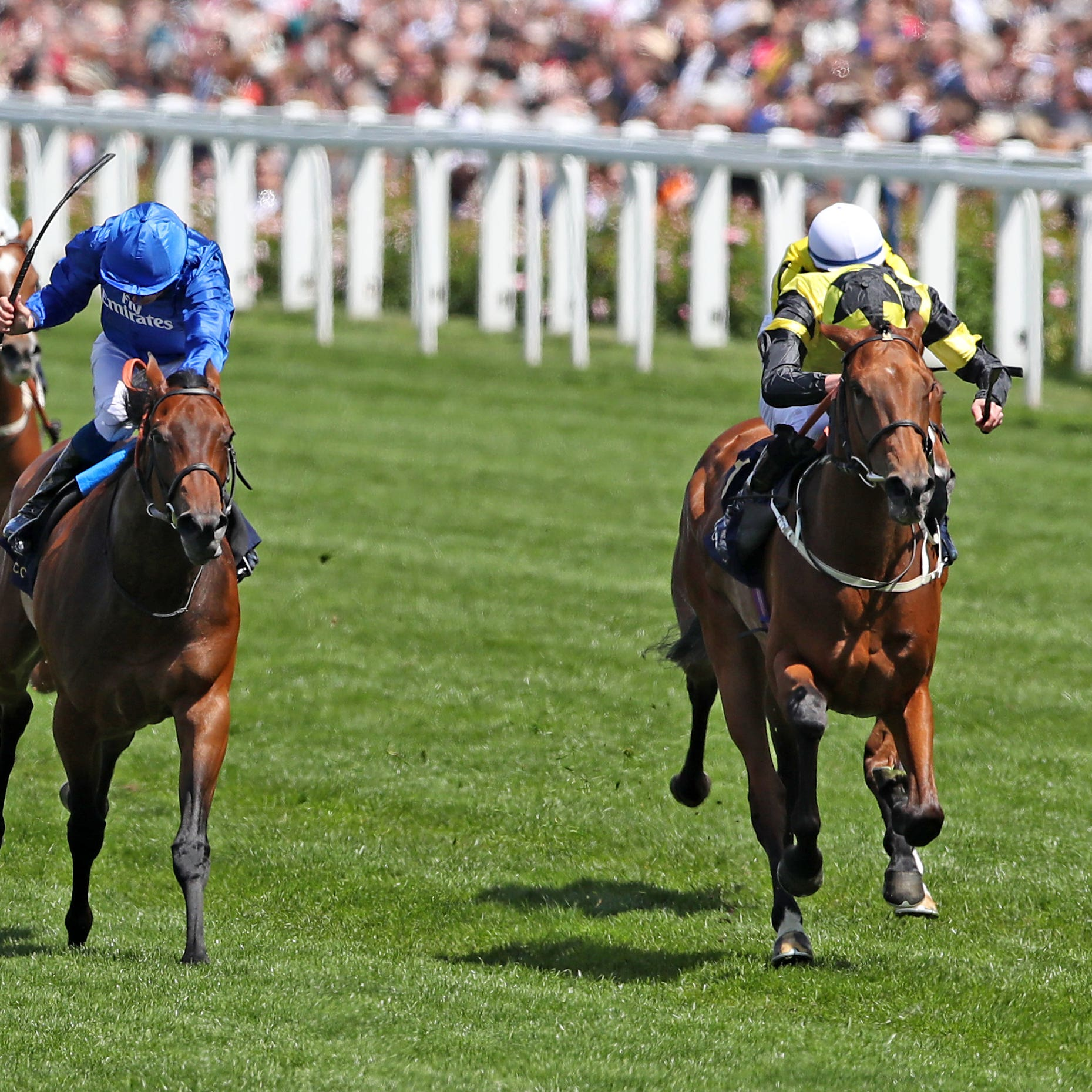 Main Edition (right) and La Pelosa (centre) fight out the finish to the Albany Stakes at Royal Ascot