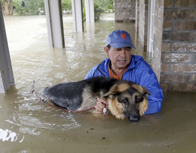 Joe Garcia carries his dog Heidi from his flooded home as he is rescued from rising floodwaters from Tropical Storm Harvey. (David J. Phillip/AP)