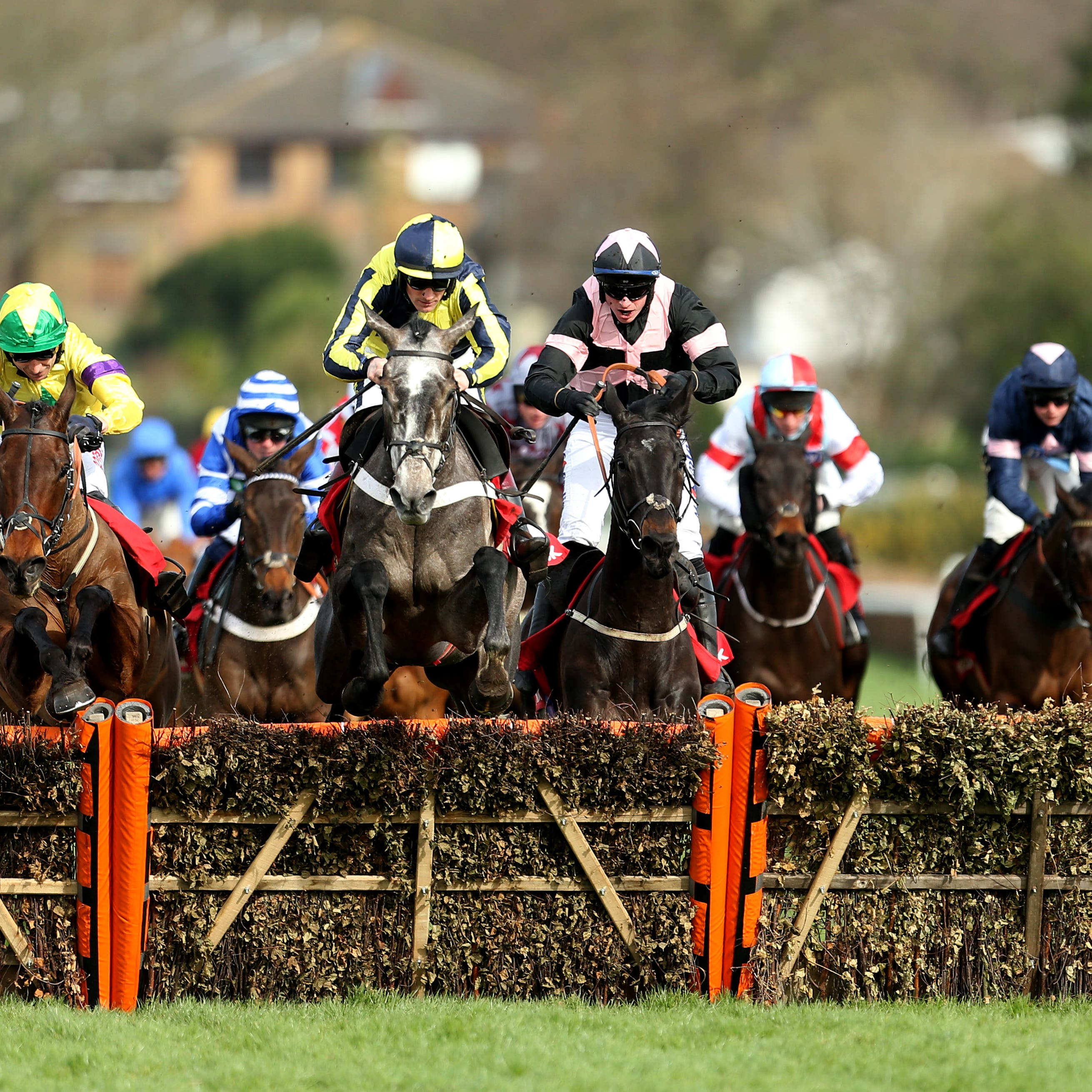 One For Rosie (yellow and blue) and Third Wind (pink and black) in action at Sandown
