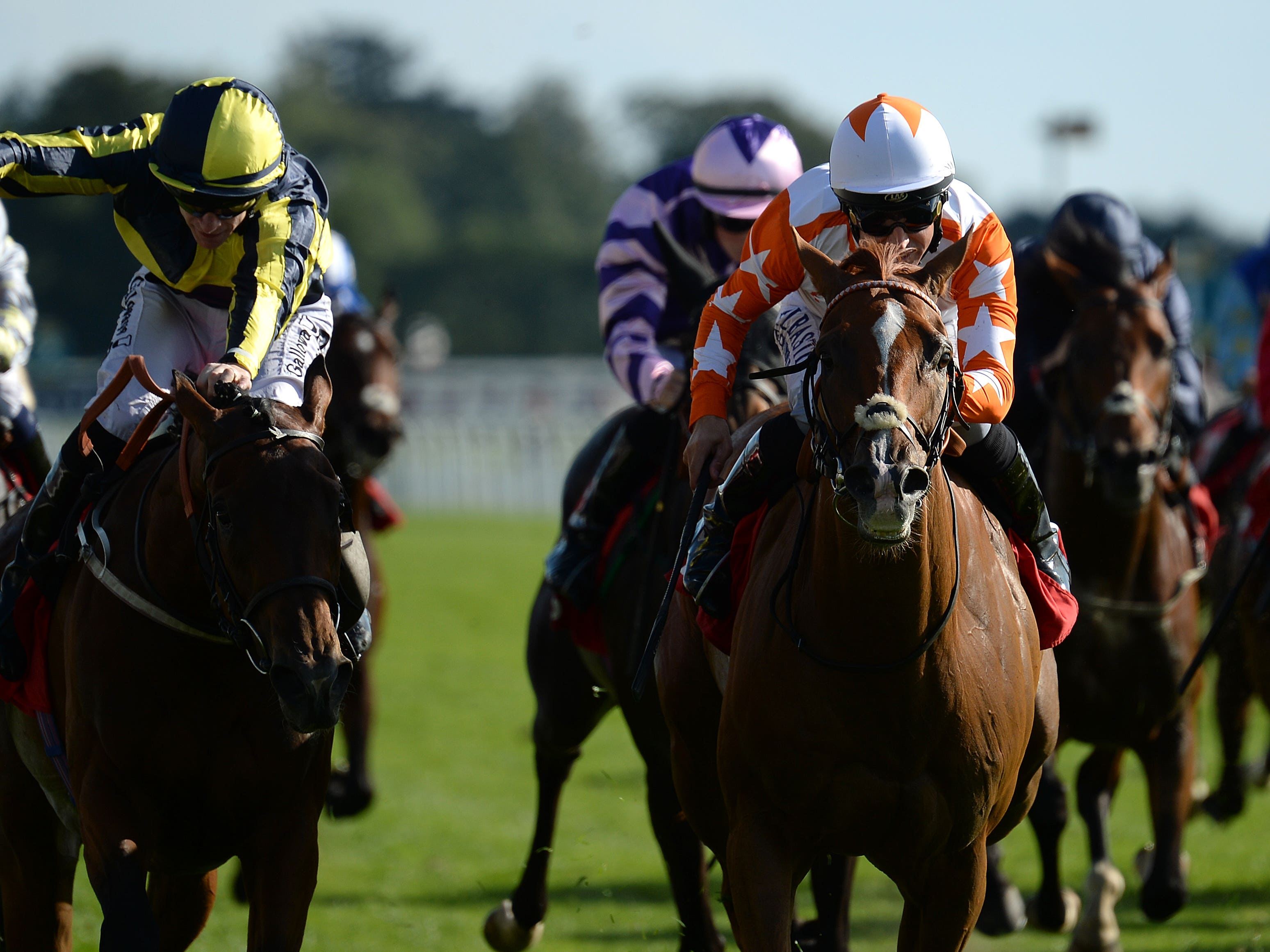 Eddystone Rock (right) is John Best's first runner in the Cesarewitch (Anna Gowthorpe/PA)