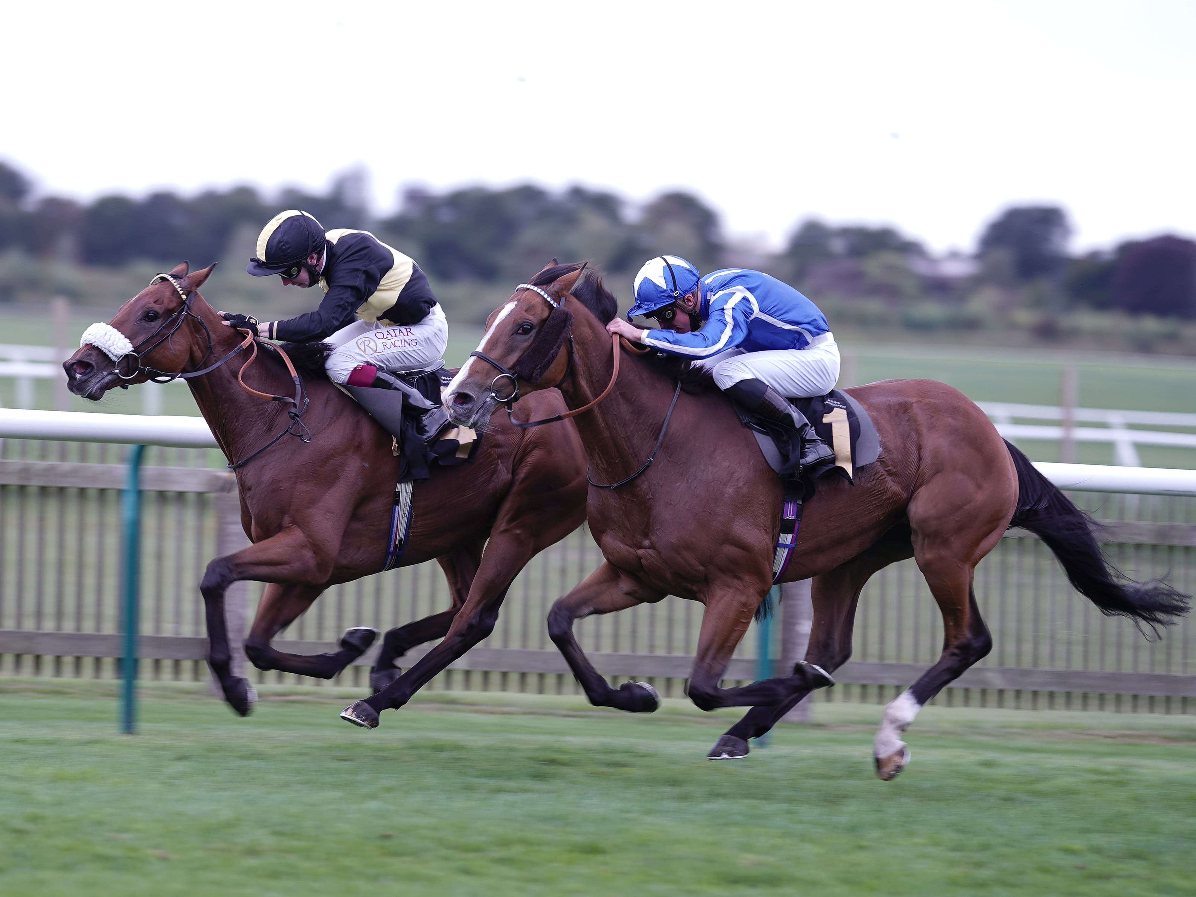 Ranch Hand (left) got the better of Withhold at Newmarket (Alan Crowhurst/PA)