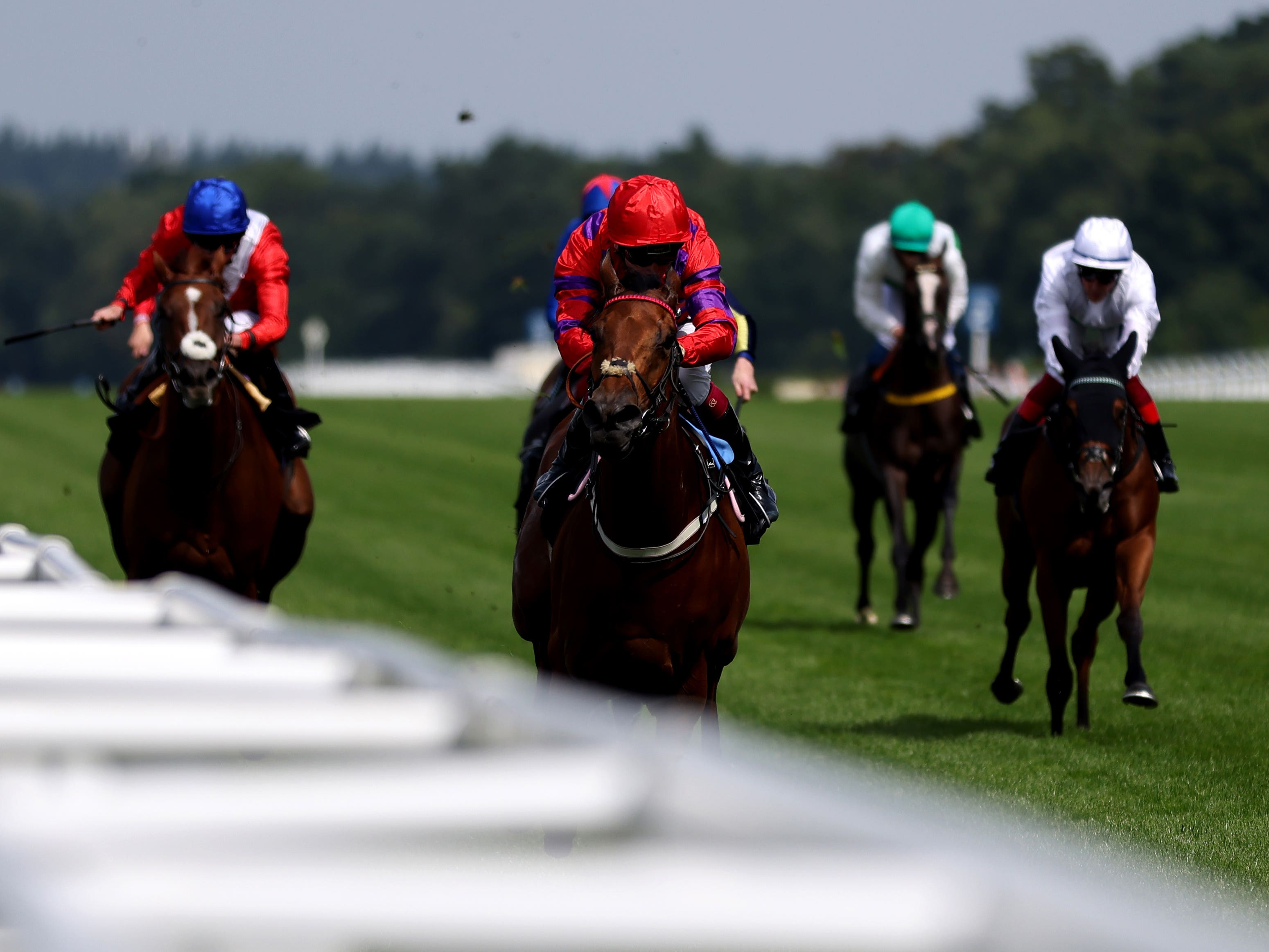 Dreamloper and Oisin Murphy were emphatic winners of the British Racecourses Join Sunflower Lanyard Scheme Valiant Stakes at Ascot (Steven Paston/PA)